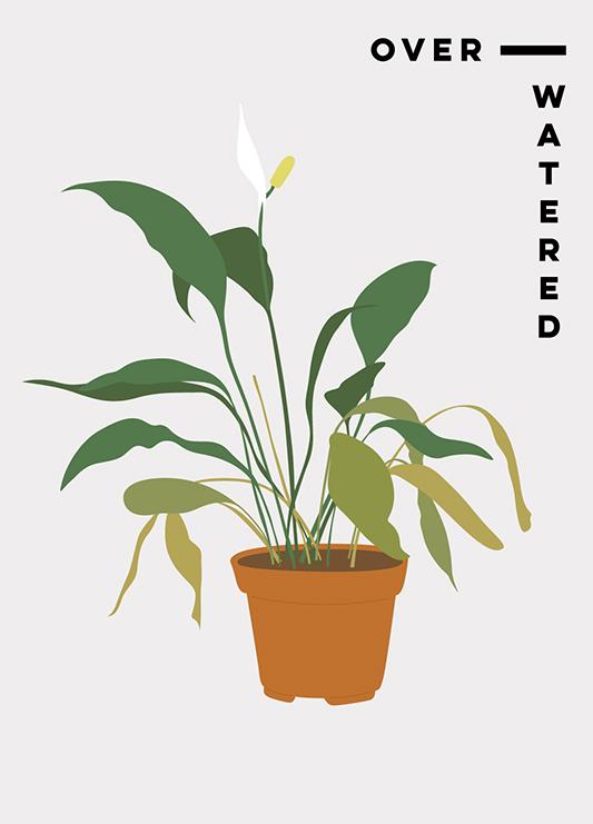 Yellow-Leaf-Plants_1.jpg