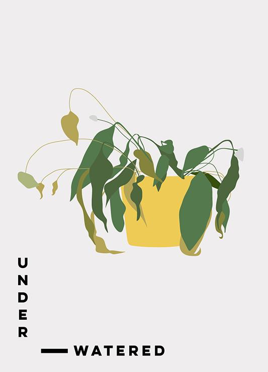 Yellow-Leaf-Plants_2.jpg