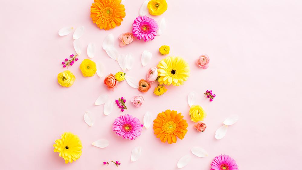 Spring-Wallpaper-Styling_6.jpg
