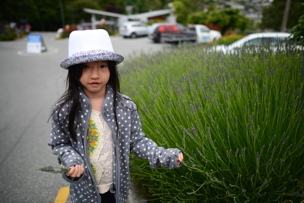 Anais enjoying the lavender. Needless to say, we had tons of dried lavender in the campervan during our stay!