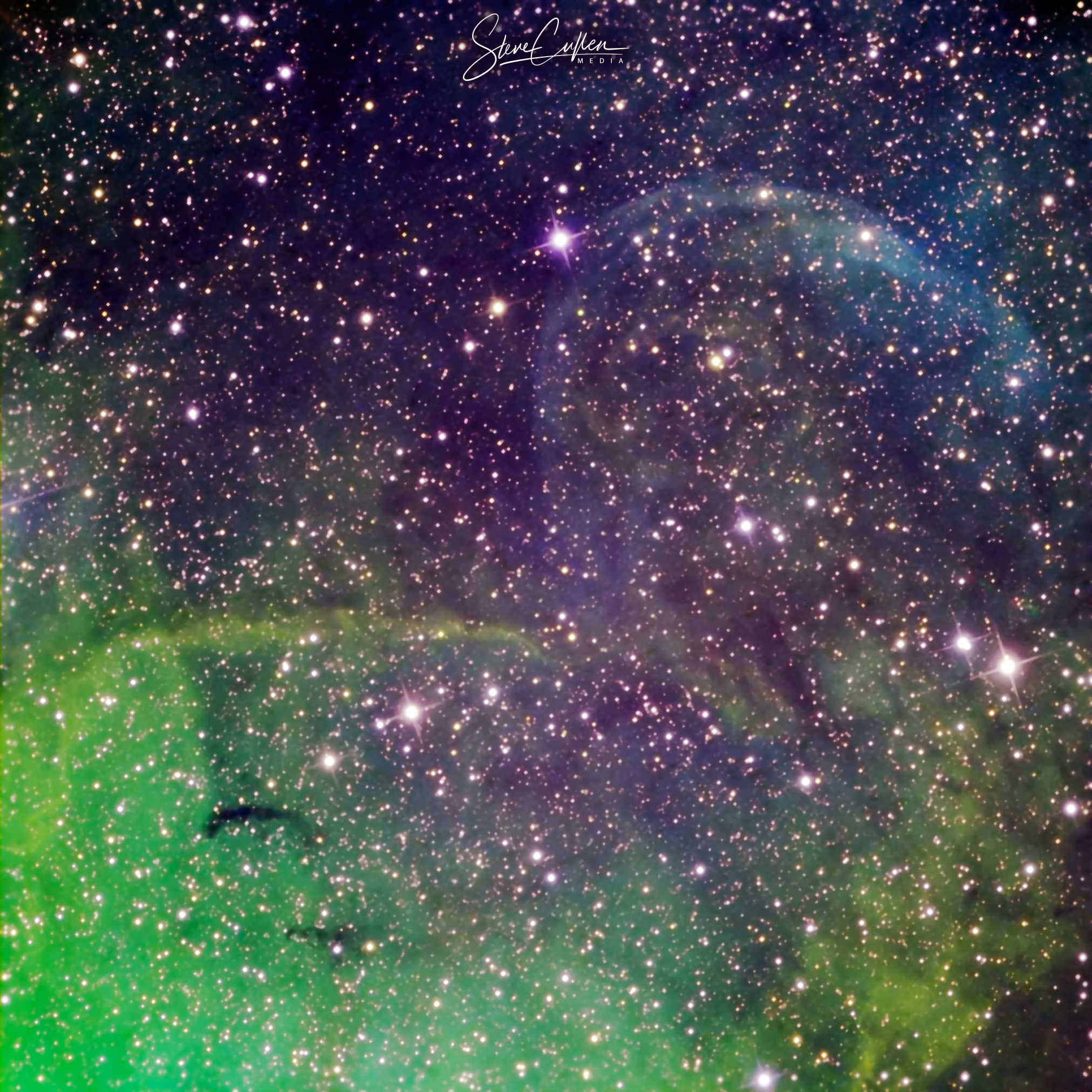 Jet-Blown Nebula of Cygnus X-1