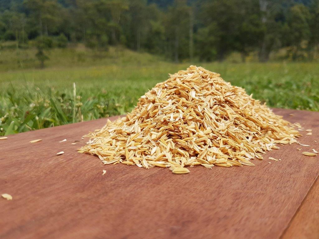 Rice Husk.jpg