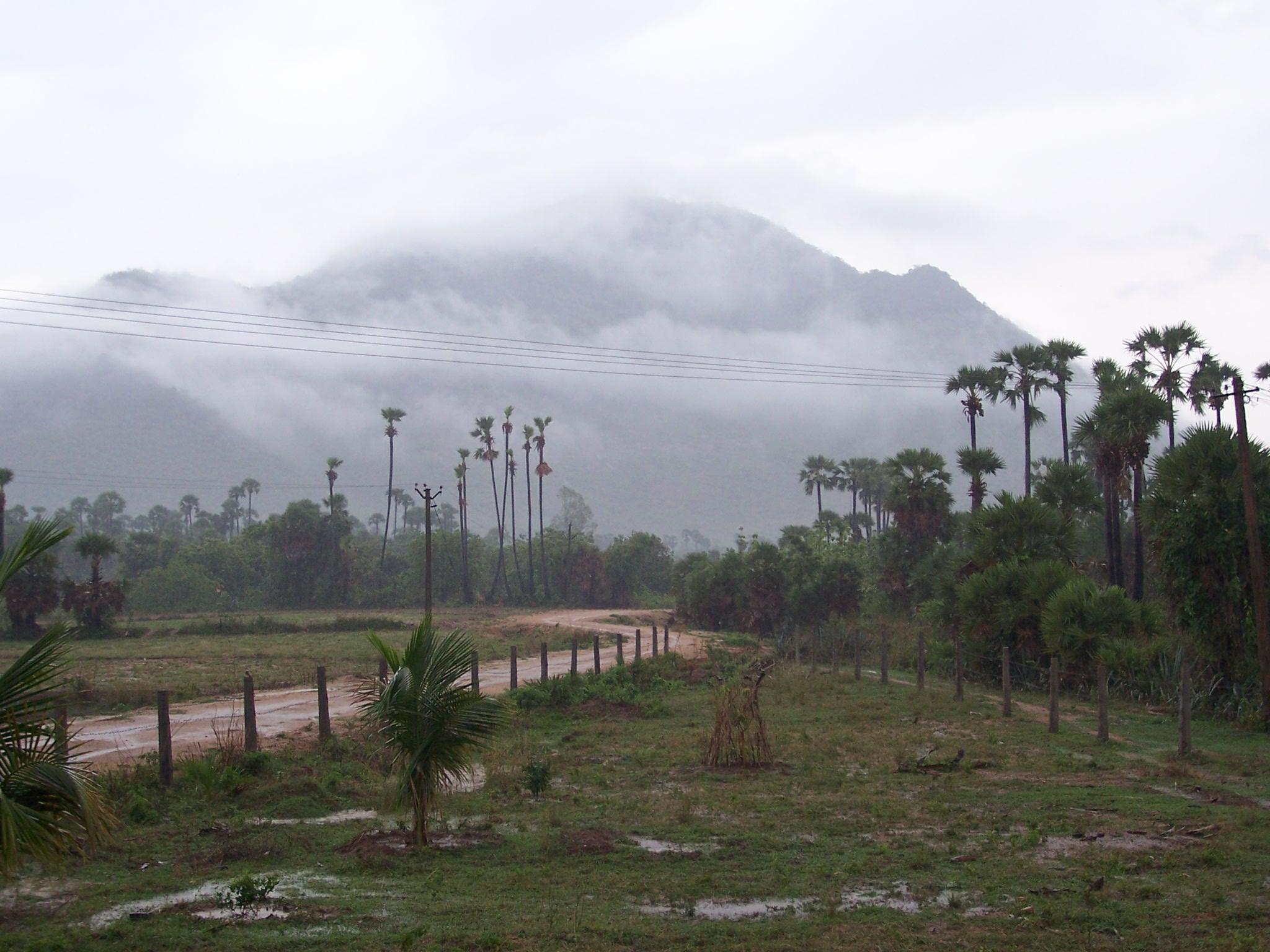 monsoon rain.JPG