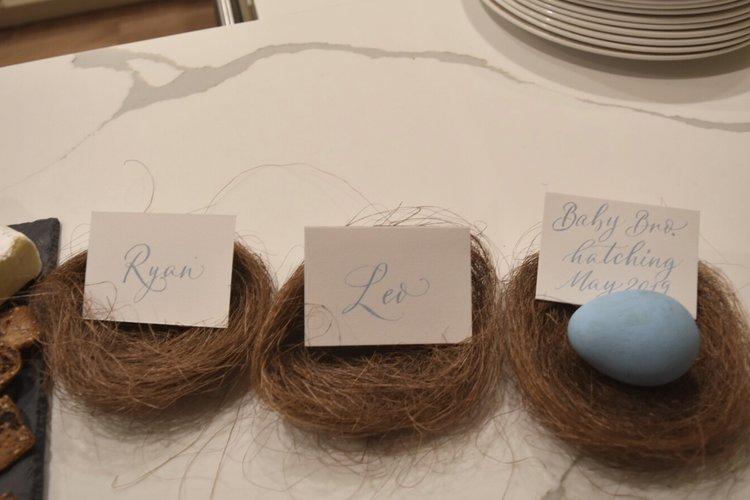 land-of-mom-pregnancy-announcement-turkey-bird-egg-nest-thanksgiving-family.jpg