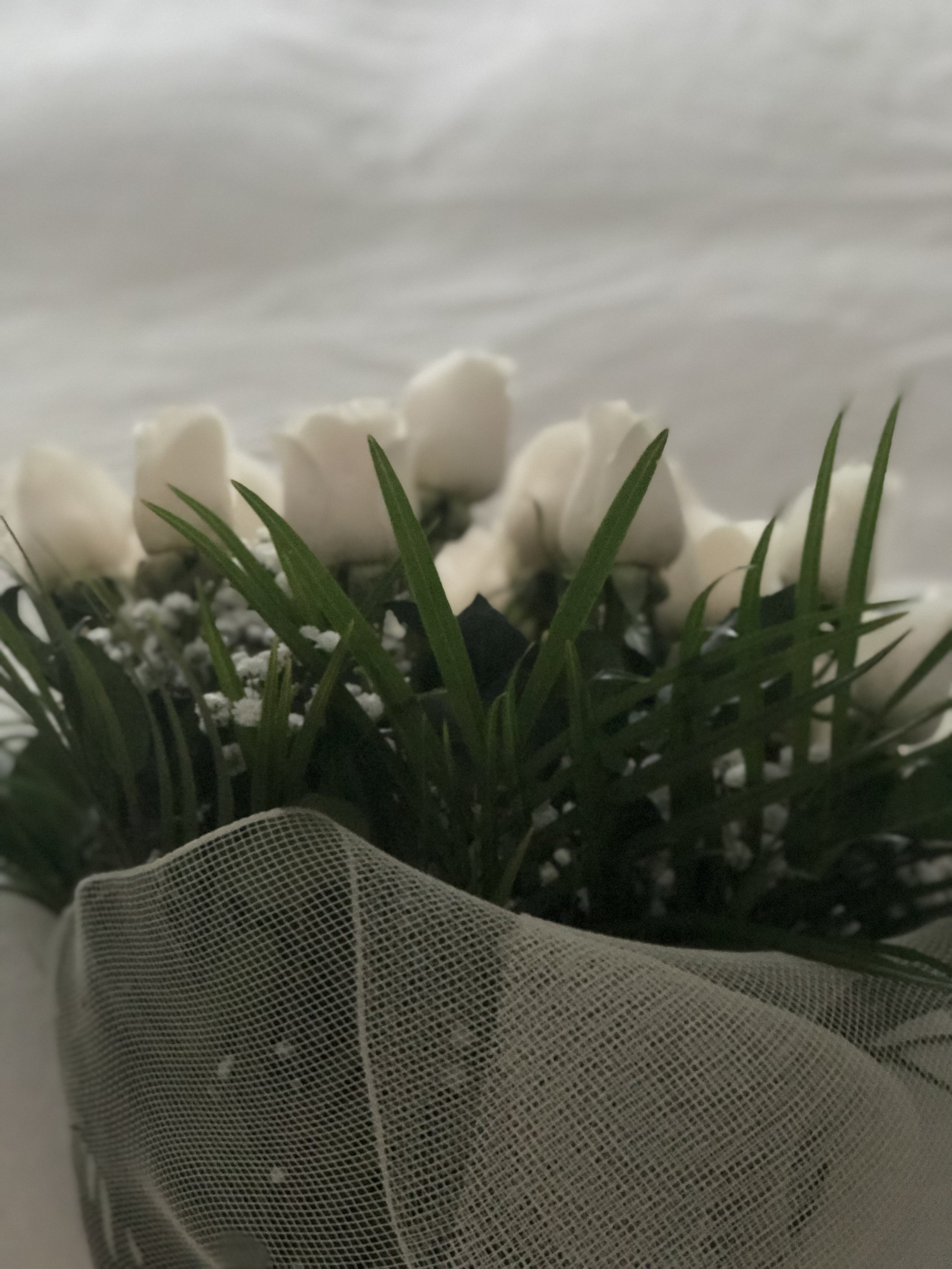 White roses, one of two flower bouquets El received for her birthday