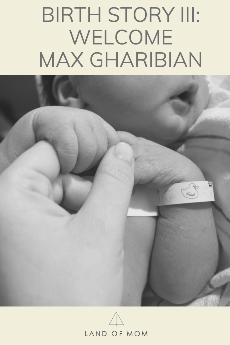 "Pinterest graphic for '""Birth Story III: Welcome Max Gharibian"""