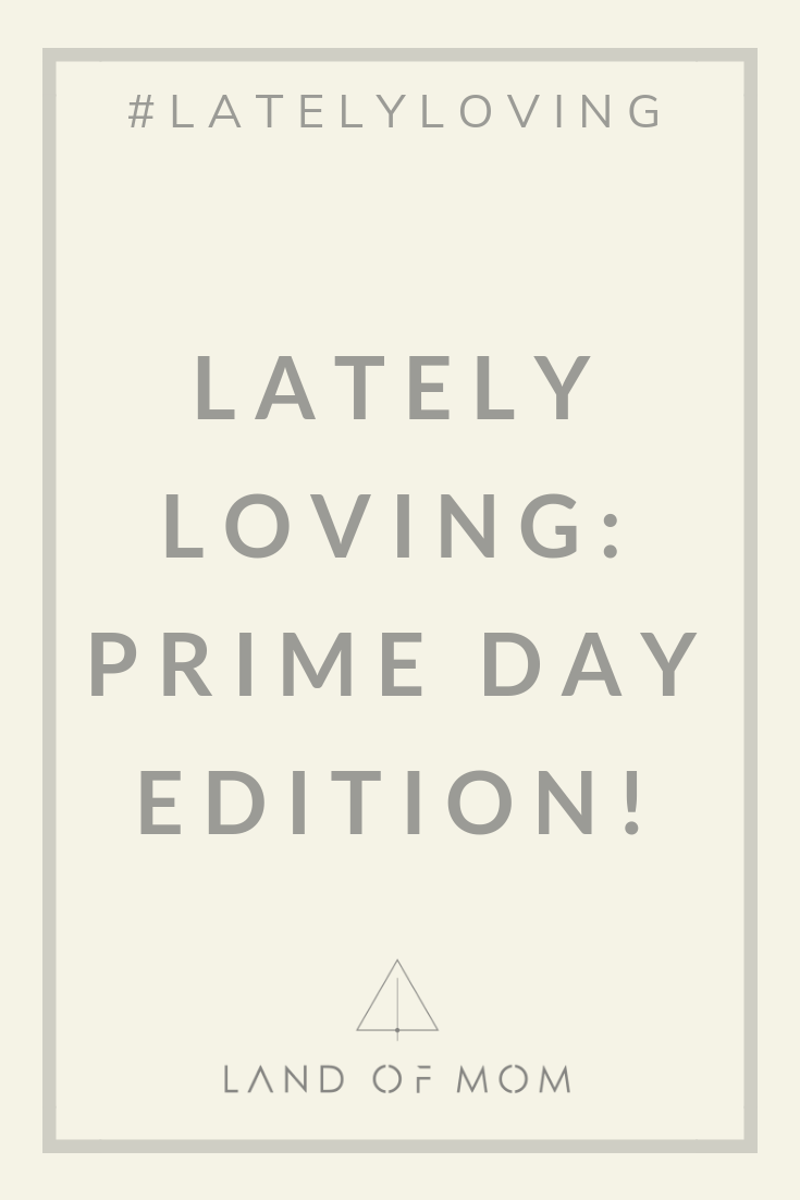 El Abad's favorite finds for Amazon Prime Day 2019 that she's Lately Loving, including some great Subscribe & Save essentials from Mrs. Meyers & more. | Land of Mom | #latelyloving #landofmom #happymom #happymomtribe #primeday #amazonprime #primeday2019