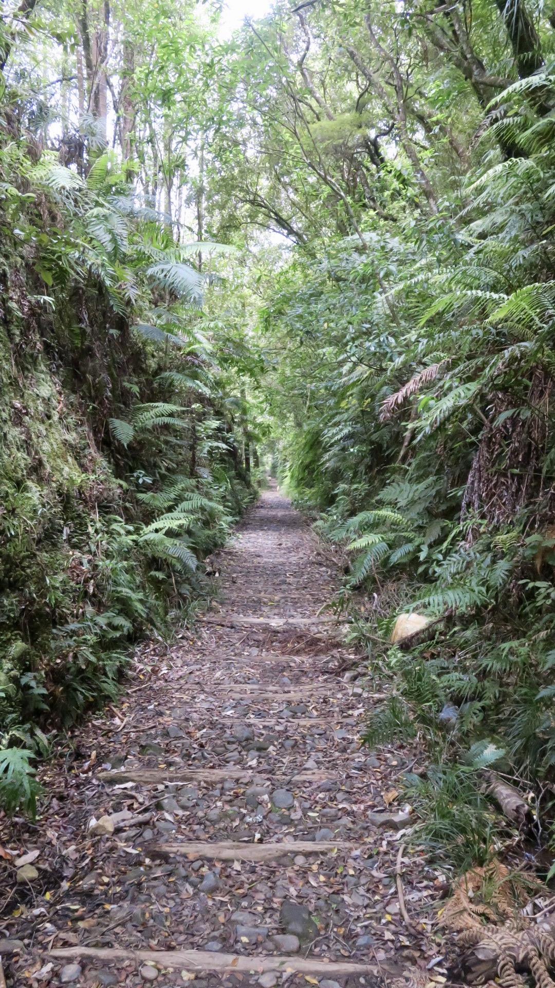 Old railway trail = Trailway?