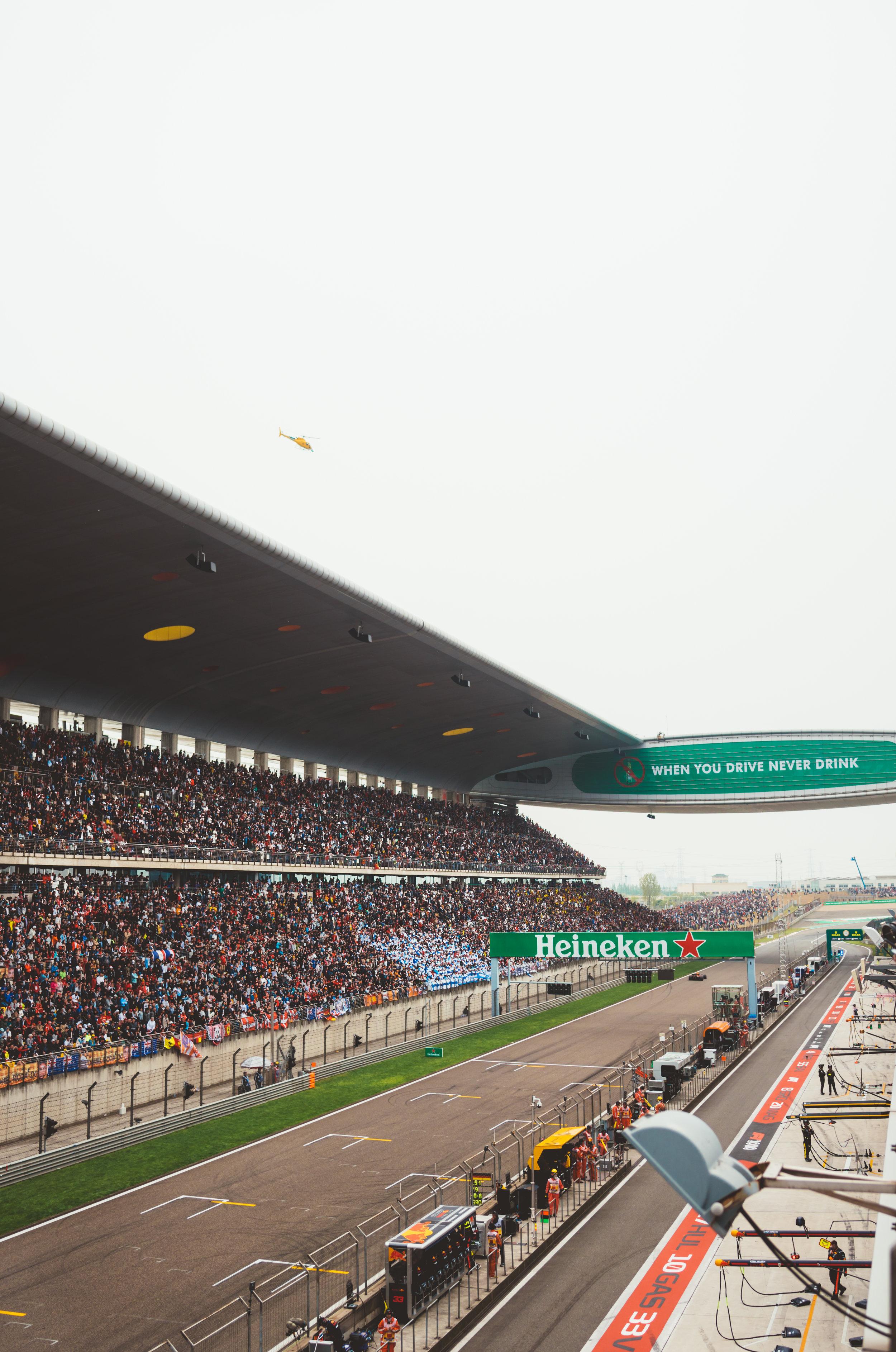 F1.LS-12.jpg
