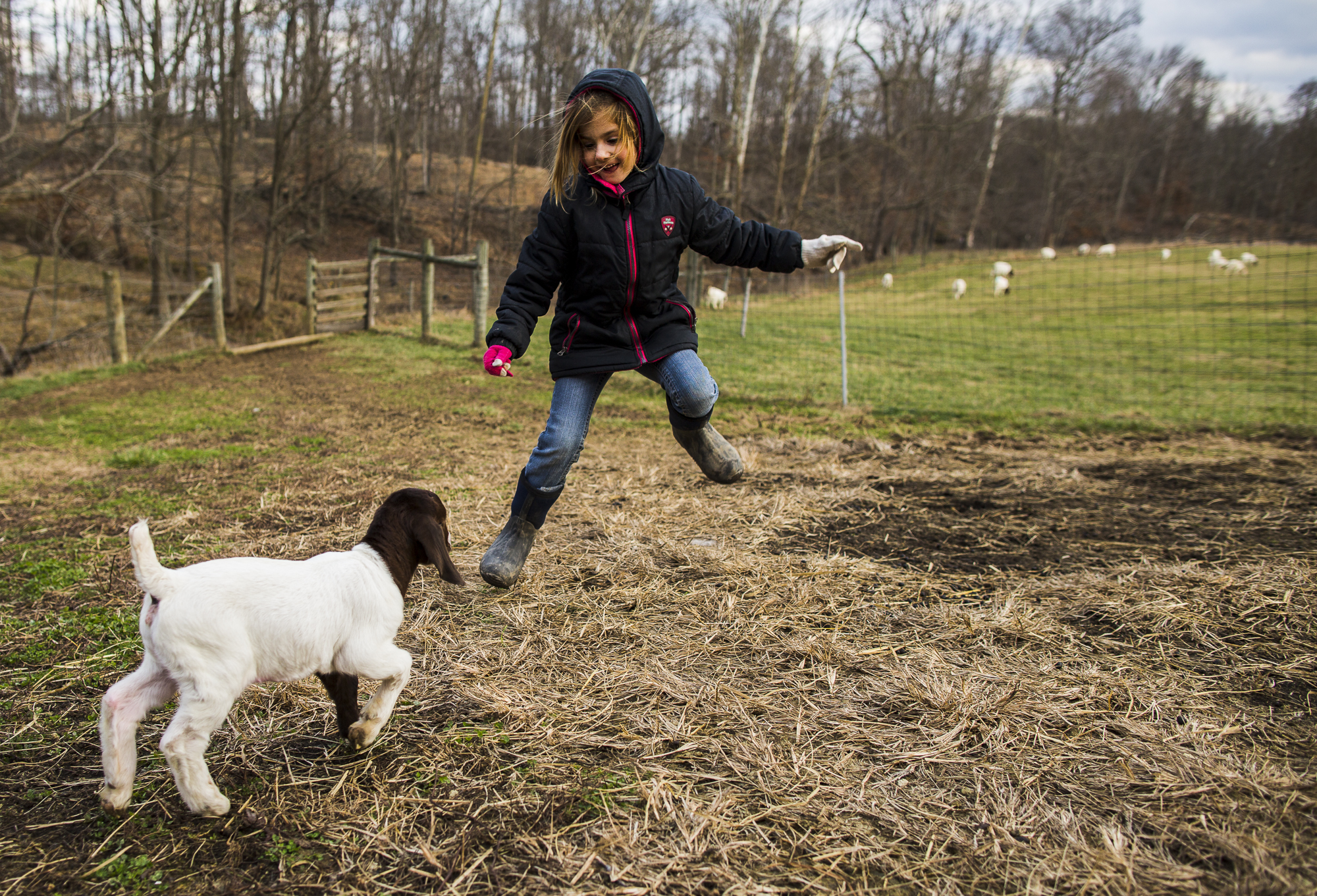 Emily plays with Grace, a preemie goat born about two weeks early.