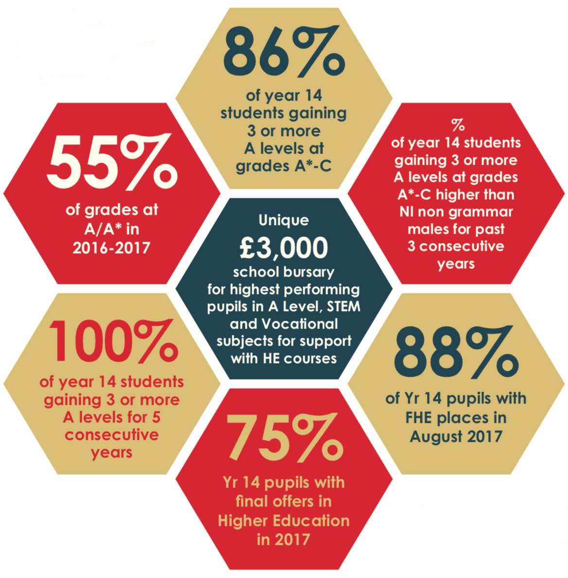 Sixth Form Statistics - 100% of year 14 students gaining 3 or more A levels