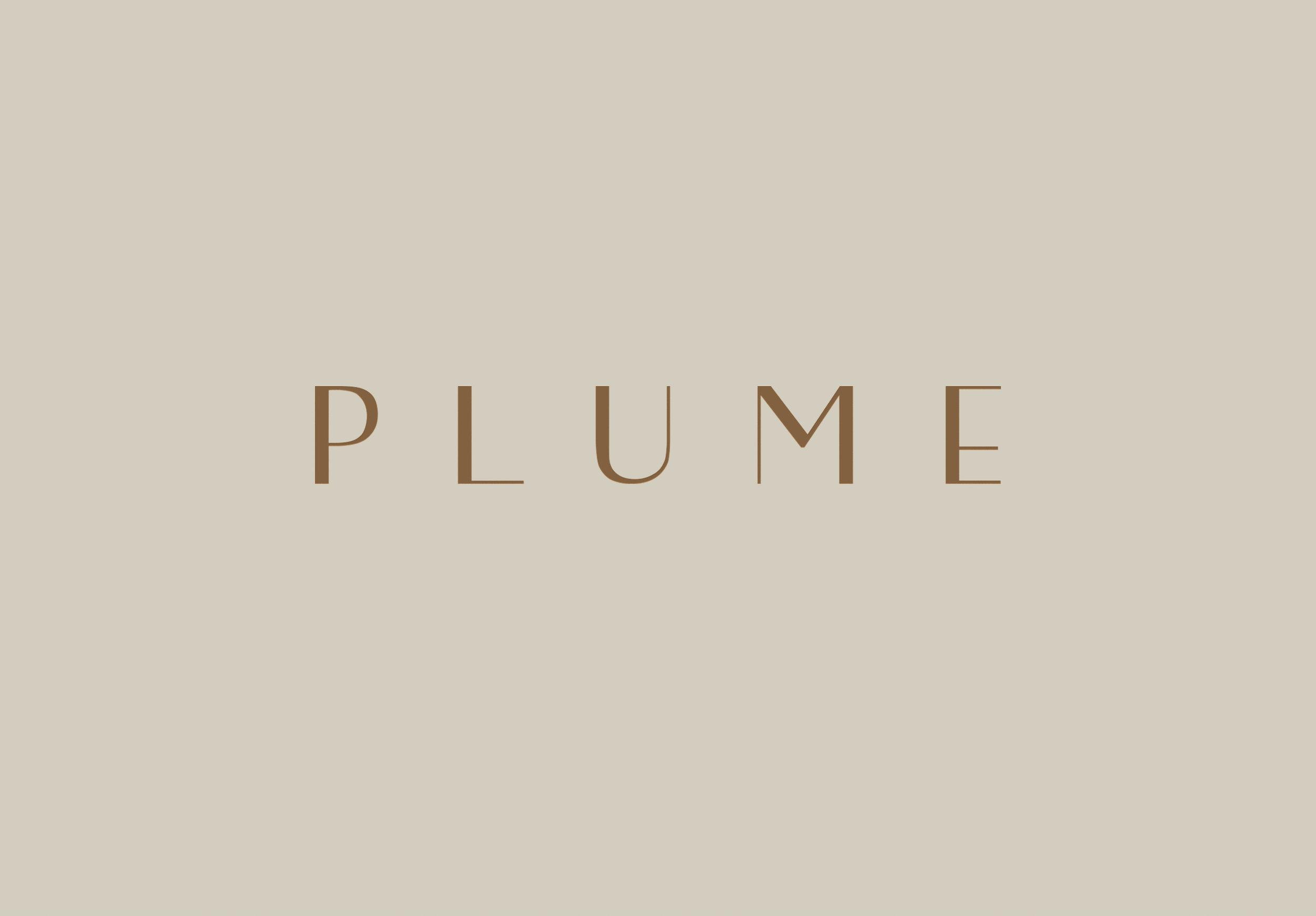 PLUME-swimwear-branding-logo-design-loolaadesigns.jpg