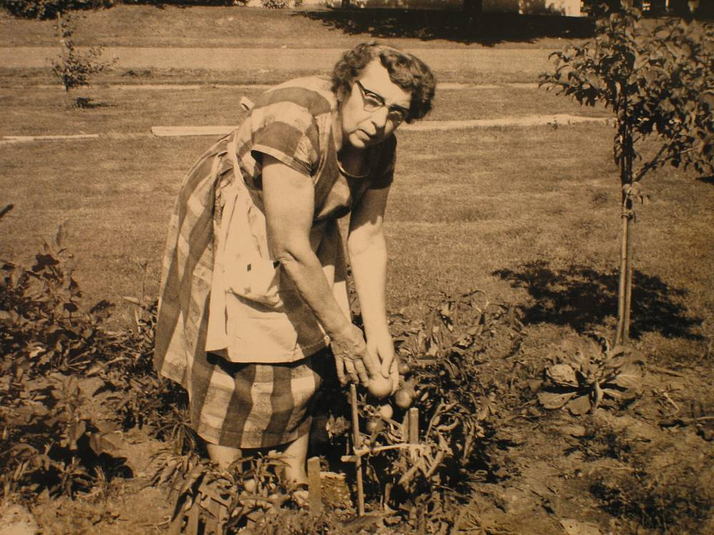 Rose in her garden, Wisconsin 1960's.