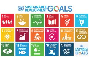 GTC UN 17 SDG.png