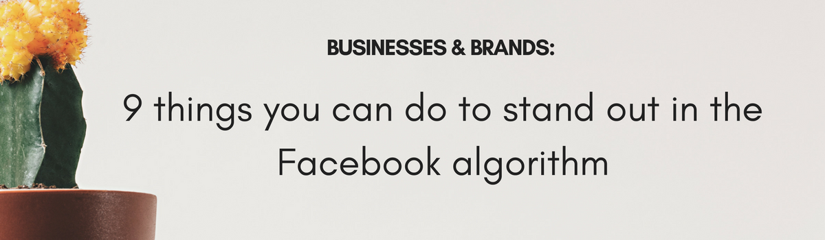 9 things your business or brand can do to stand out in the Facebook algorithm.png