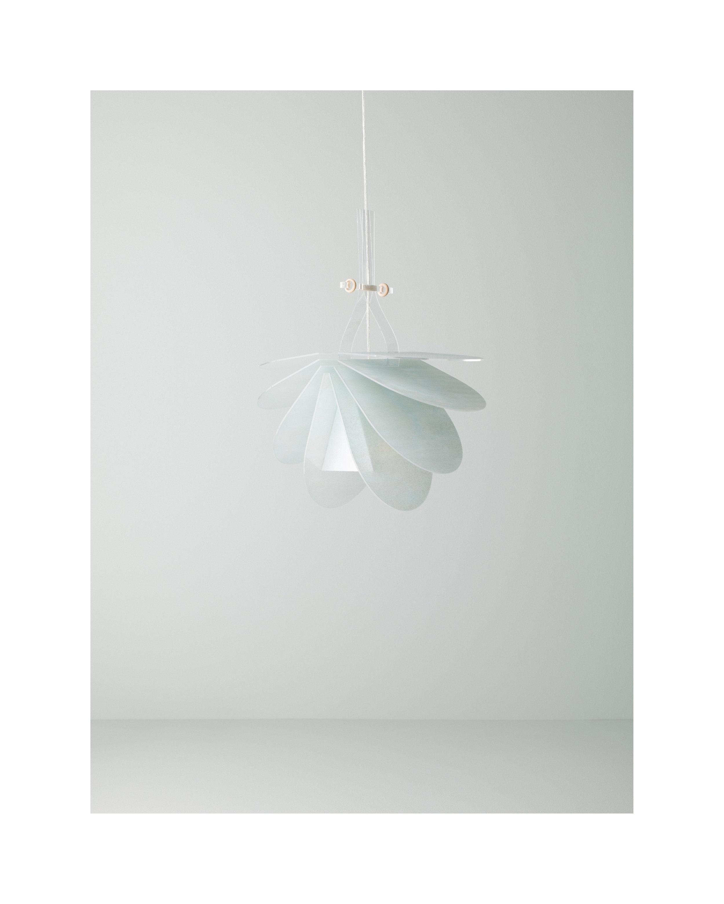 N / L lamp