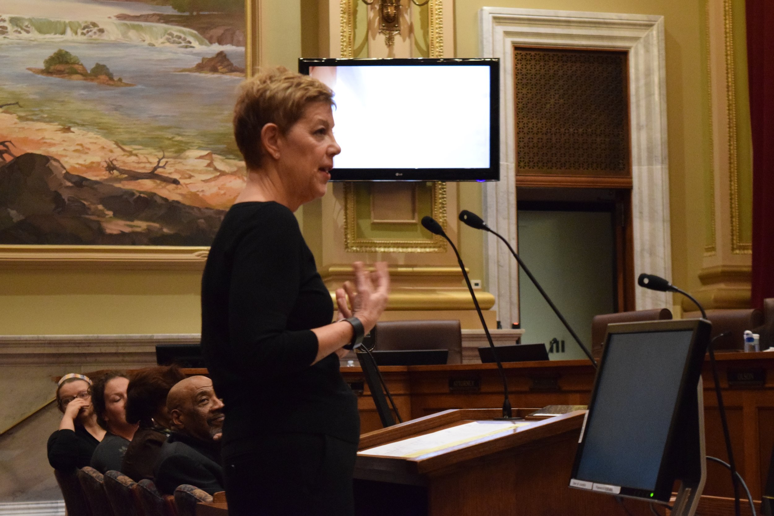 Homewood resident and former City Council President Jackie Cherryhomes addressed the Heritage Preservation Commission on February 28.