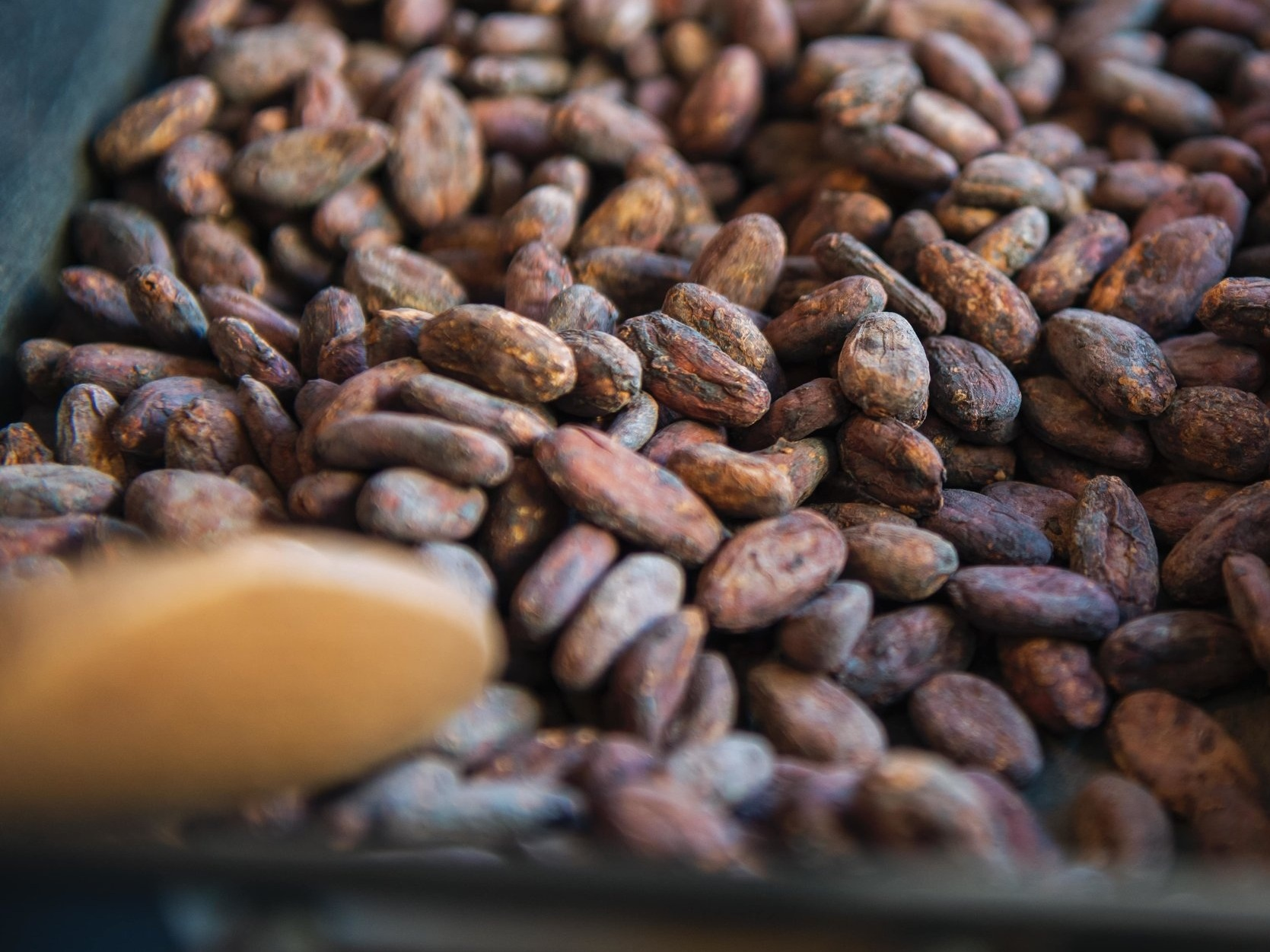 Roasting - We roast our beans to get the perfect flavour from our product. Every origin needs its own roasting time and temperature to get the very best flavours from it.