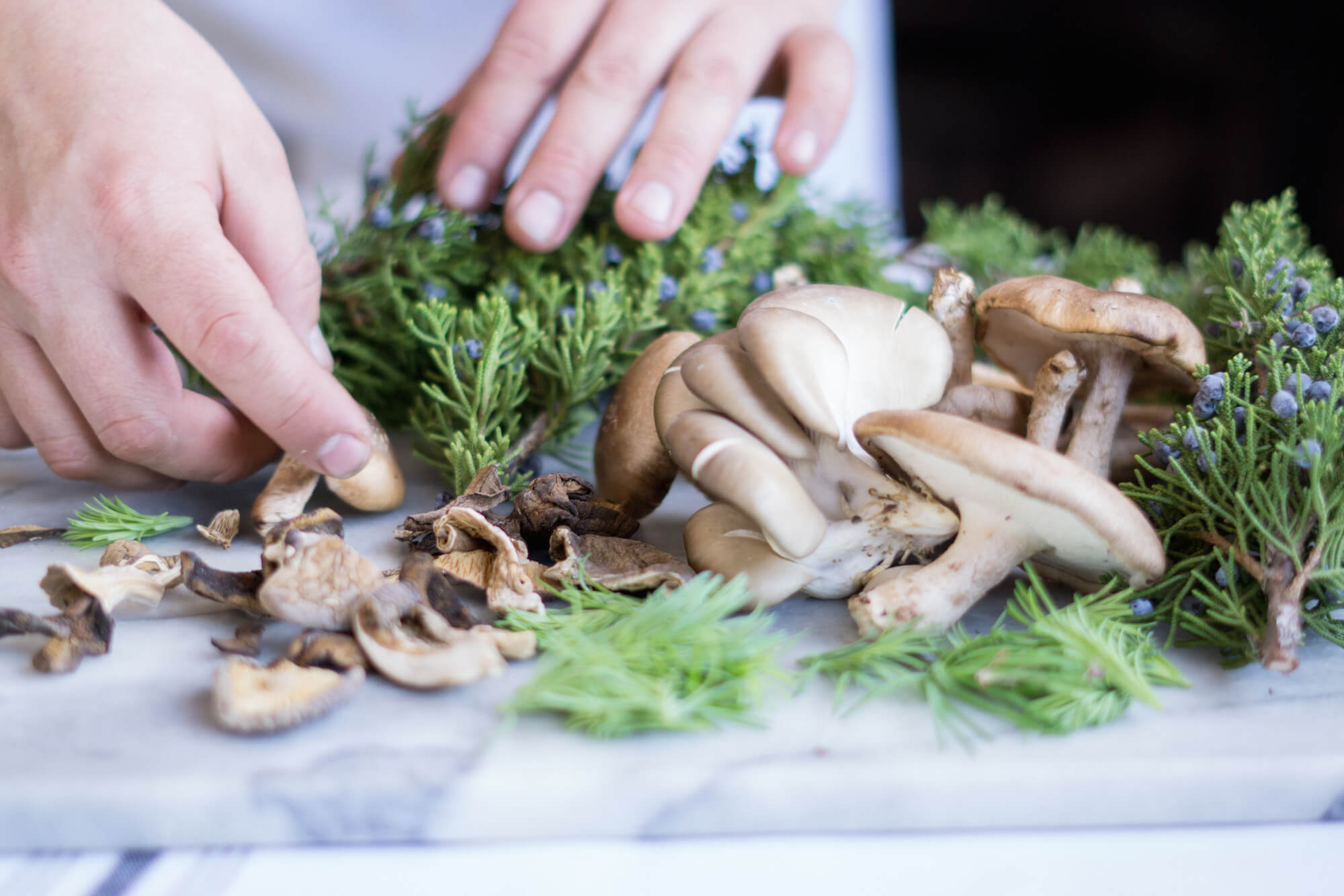 In most of the Nordic region, mushrooms weren't eaten for many generations