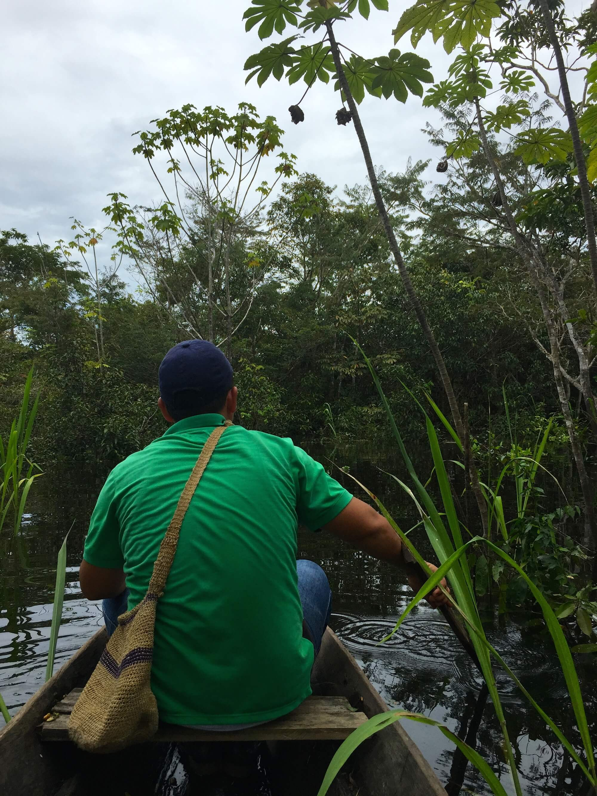 Traditional tribes in the Amazon still hunt, gather, and fish throughout the jungle