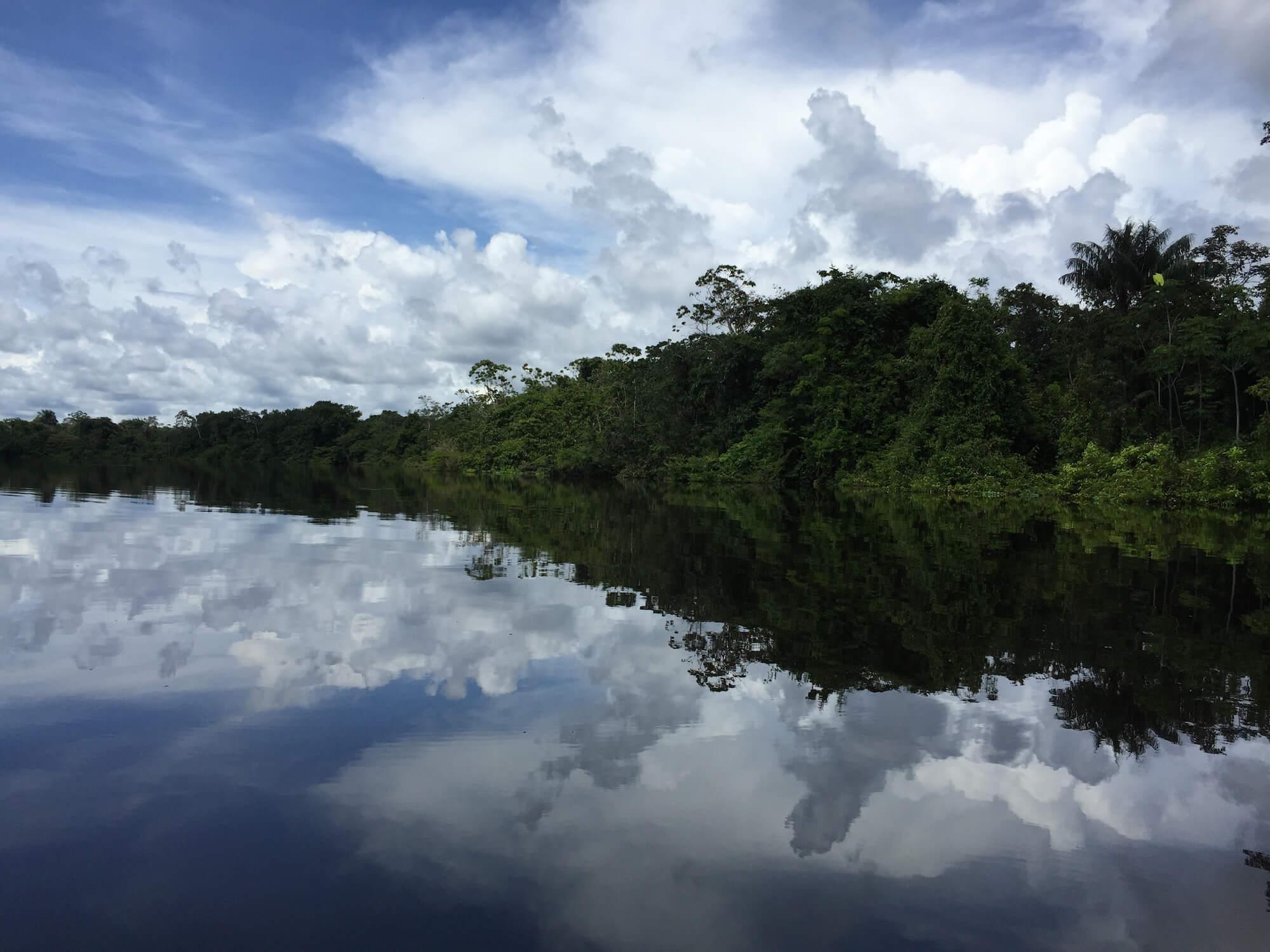 Aprenderás recetas tradicionales amazónicas, explorarás nuevos sabores e ingredientes y descubrirás técnicas culinarias que nunca creías que existieran -