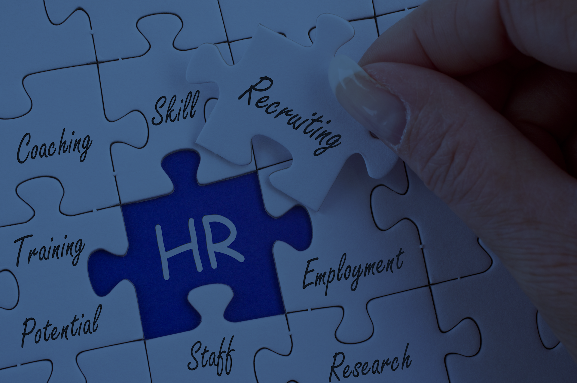 Private Label HR & Startup Support - Our unique approach to delivering HR executive services is predicated on an embedded model. Our consultants will literally join your organization and represent your firm. Whether you need a stealth technical recruiter for a month or a VP HR or Talent for a day every week, our Private Label service allows you to secure the skills you want on your terms.