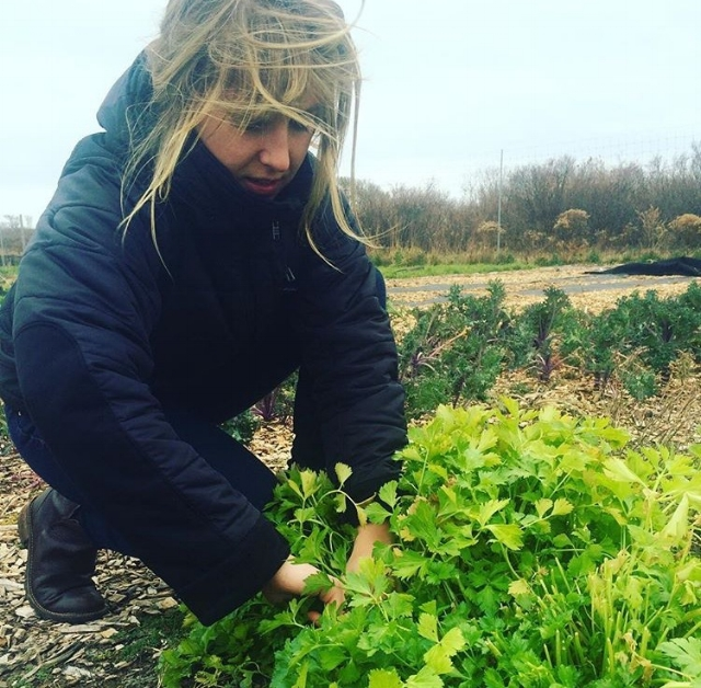 Chef and Menu Mastermind Leah Mojer picking out the best of the best from Lazy Man Gardens
