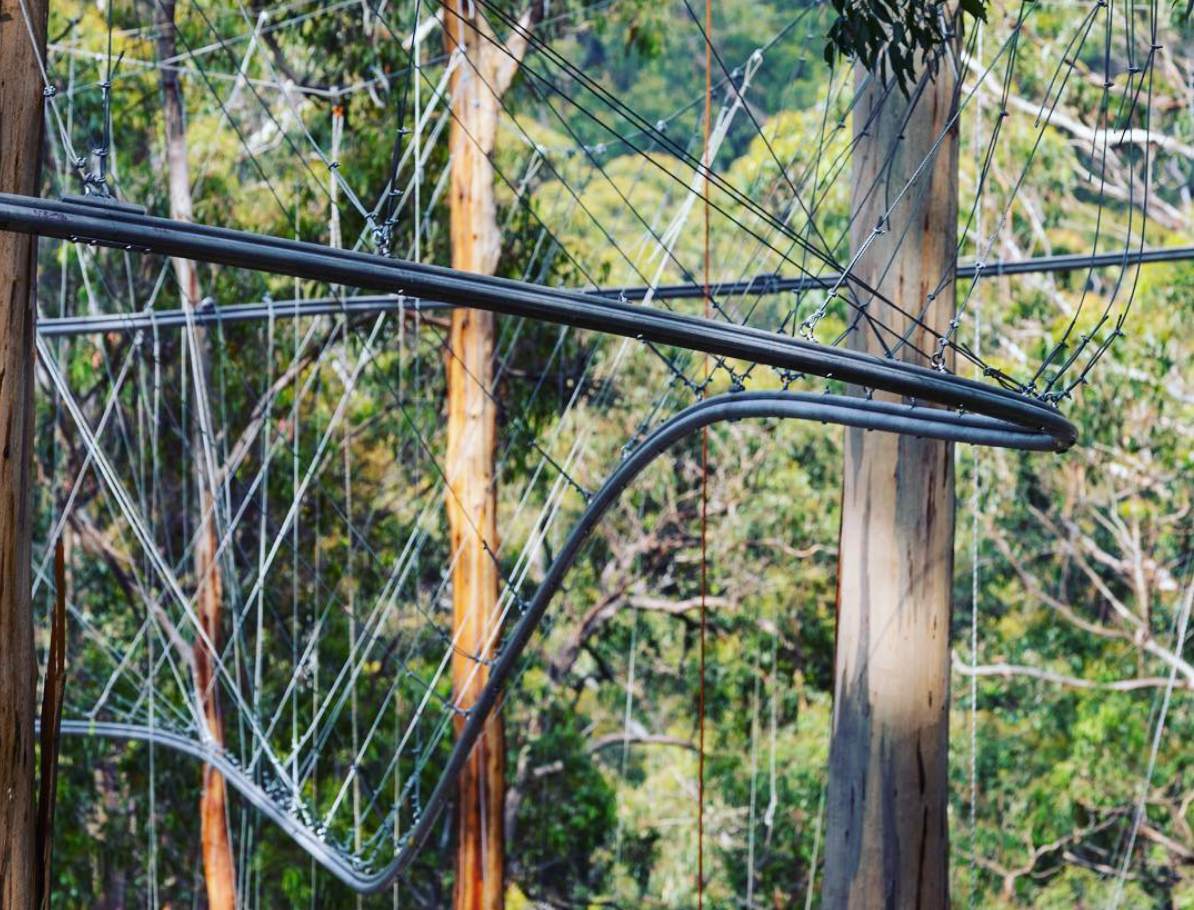 Electrifying experiences - Offering electrifying outdoor experiences in the heart of Victoria's Great Ocean Road Region, Live Wire Park is the first completely off-grid elevated adventure park in Australia. OPENS MARCH 1ST 2018BOOK NOW