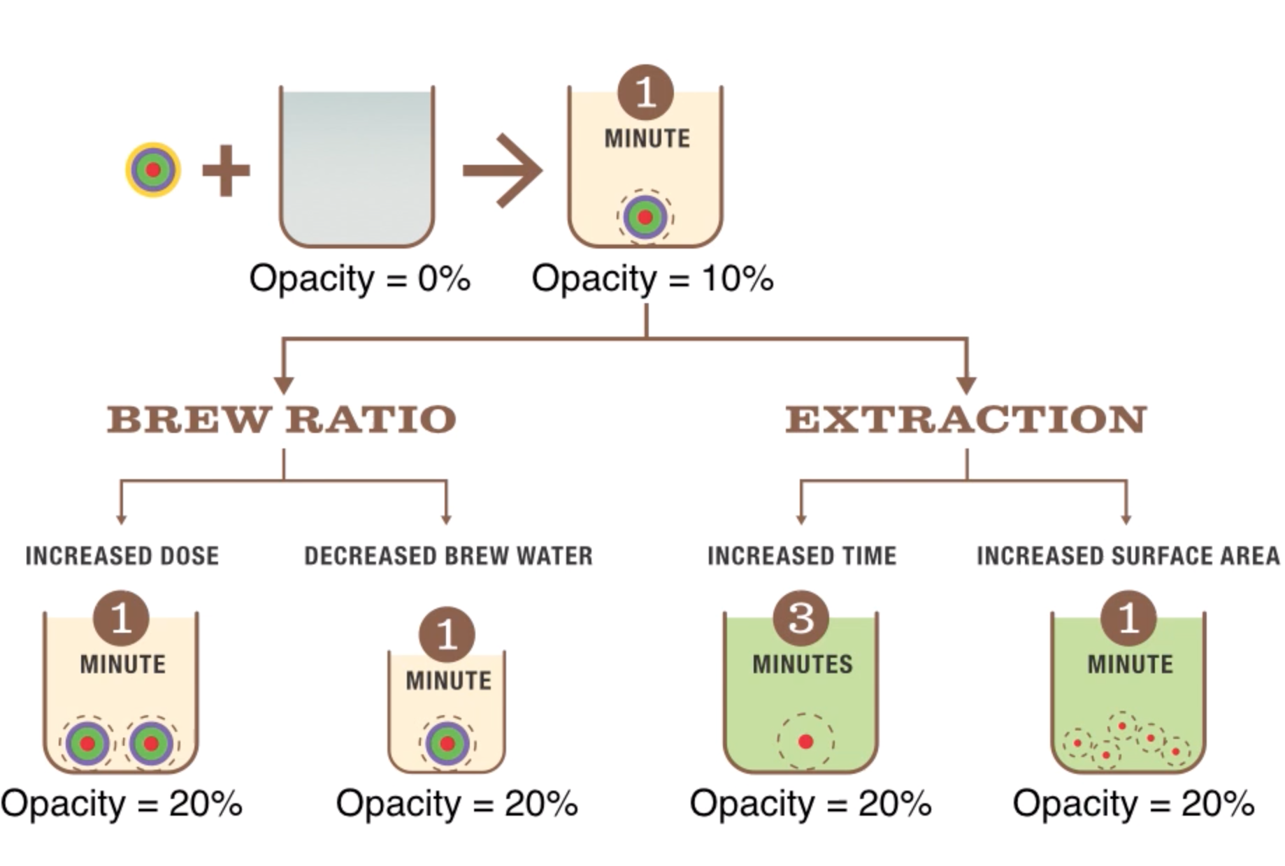The relationship between TDS, brew ratio and extraction