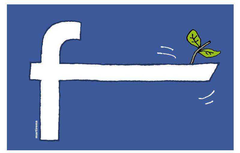 facebook lies