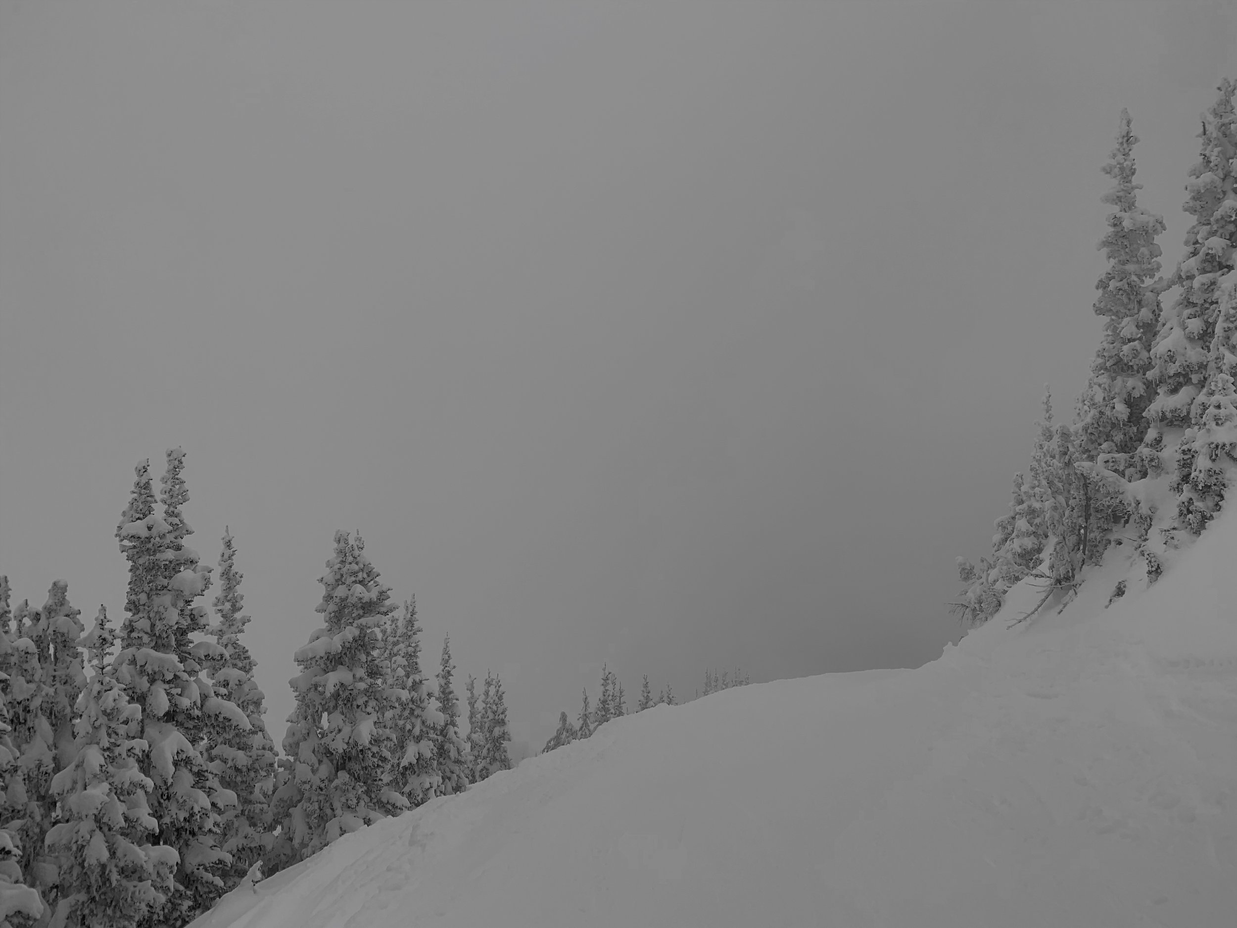 View of Powder Bowl
