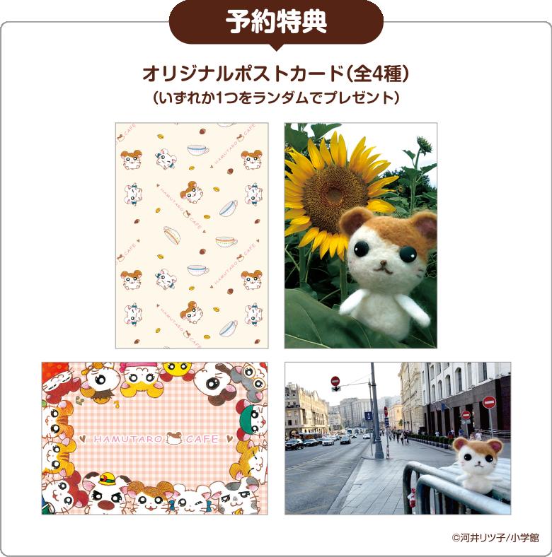 Advance reservation postcard - 事前予約特典   ポストカード