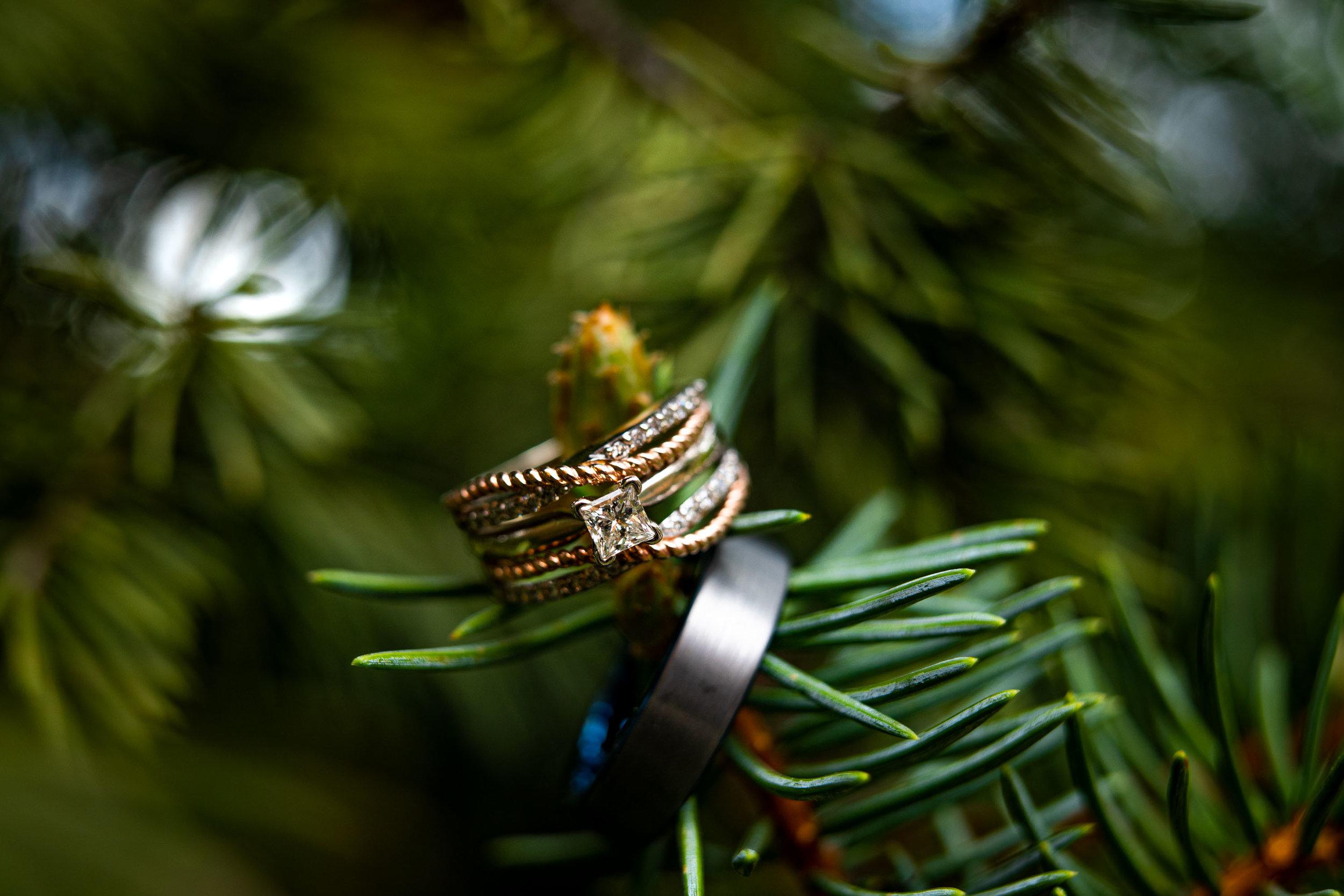 Pines_Genesee_Colorado_Wedding-1.jpg