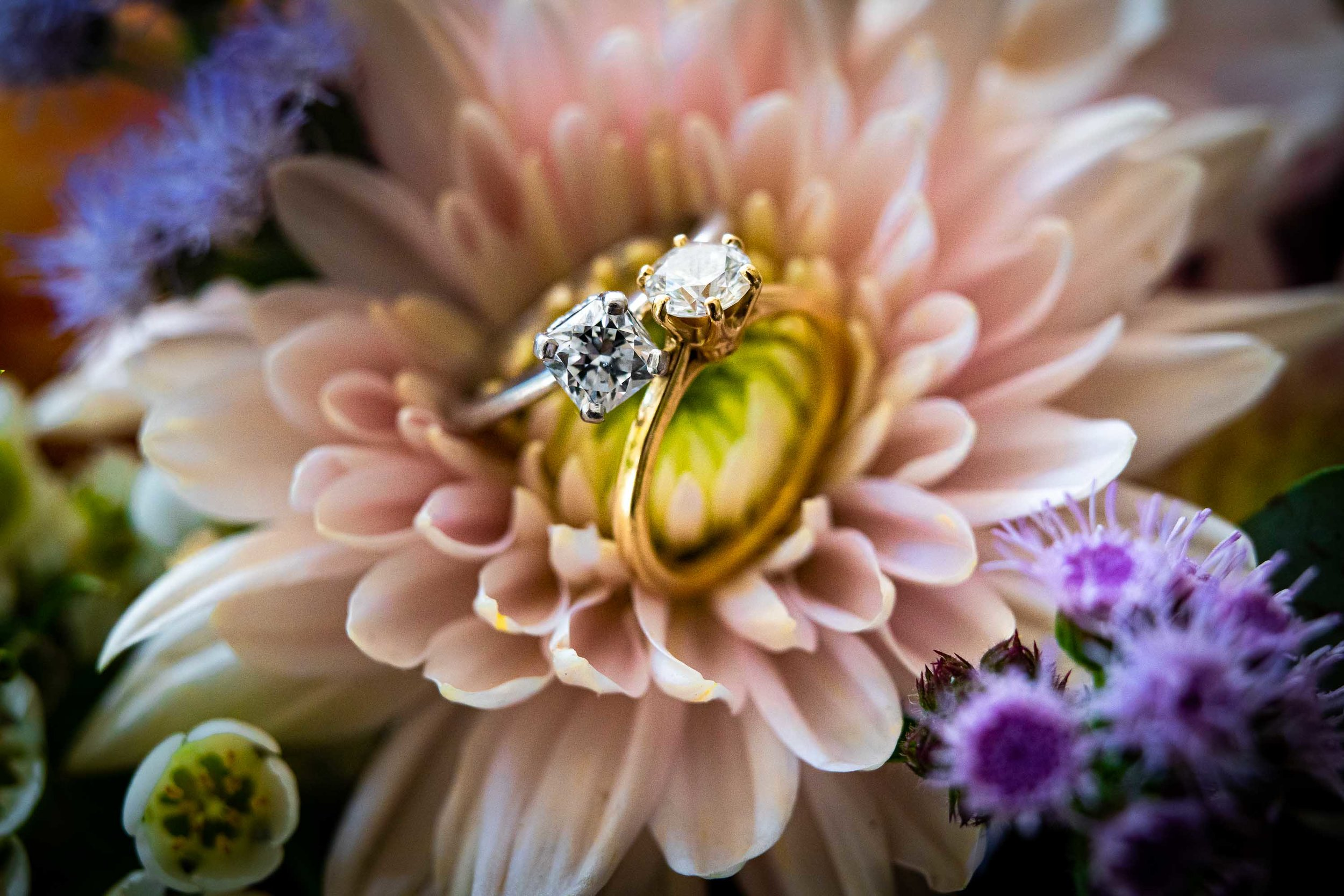 Rist_Canyon_Inn_Laporte_Wedding-2.jpg