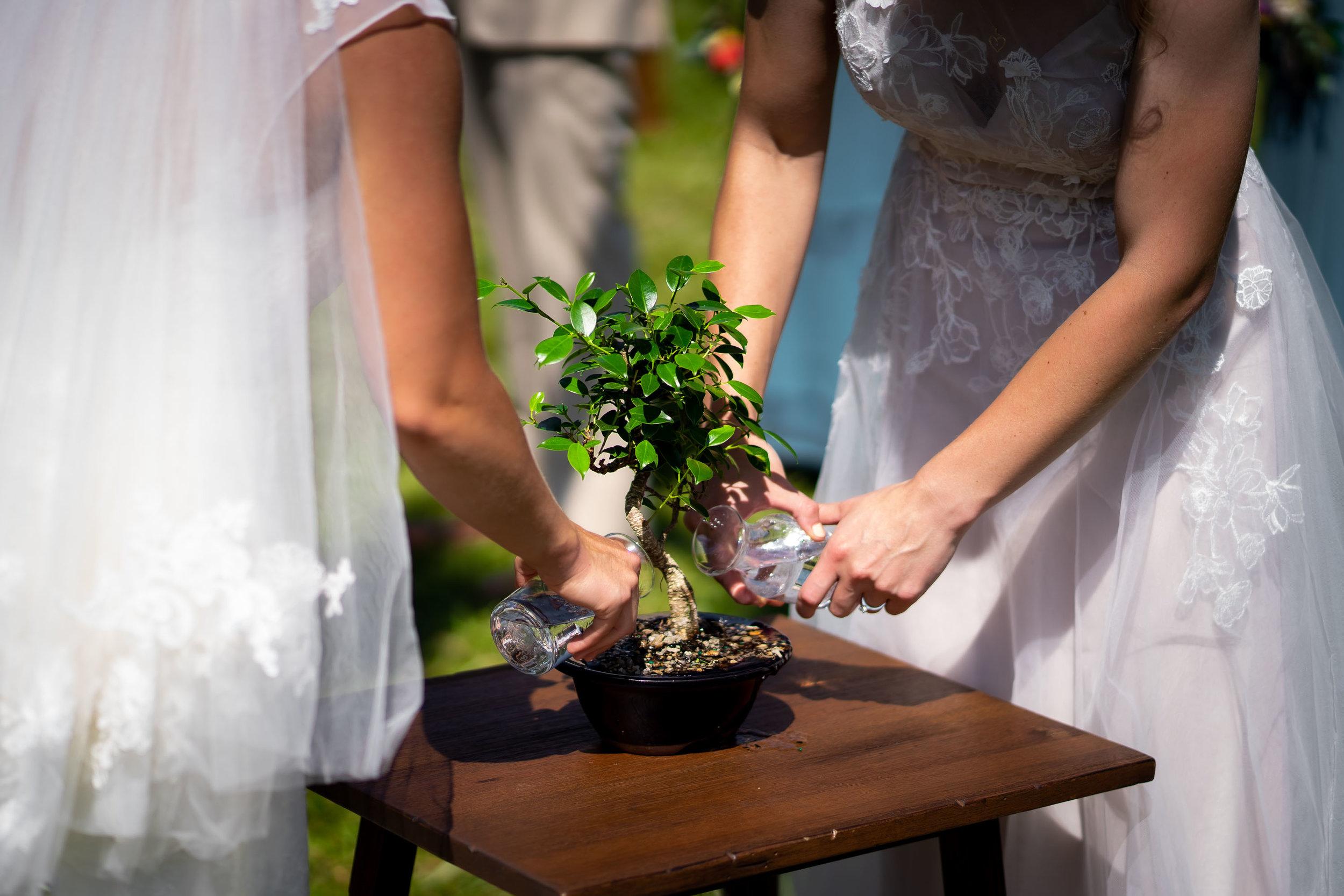 Rist_Canyon_Inn_Laporte_Wedding-104.jpg