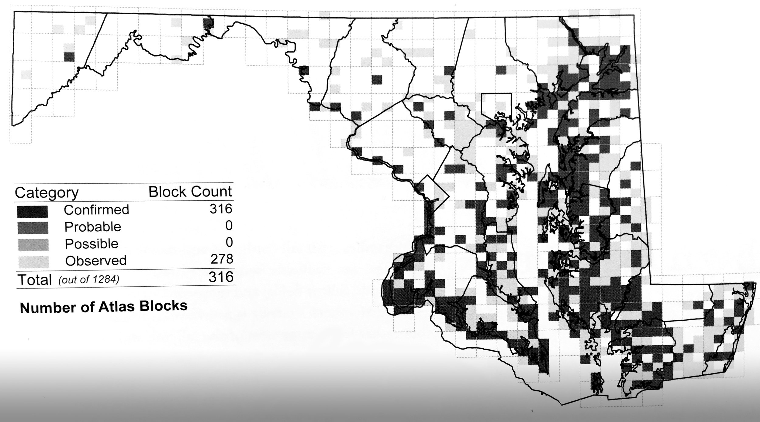 Breeding distribution of Bald Eagles in Maryland during the most recent Breeding Bird Atlas, 2002-2006.