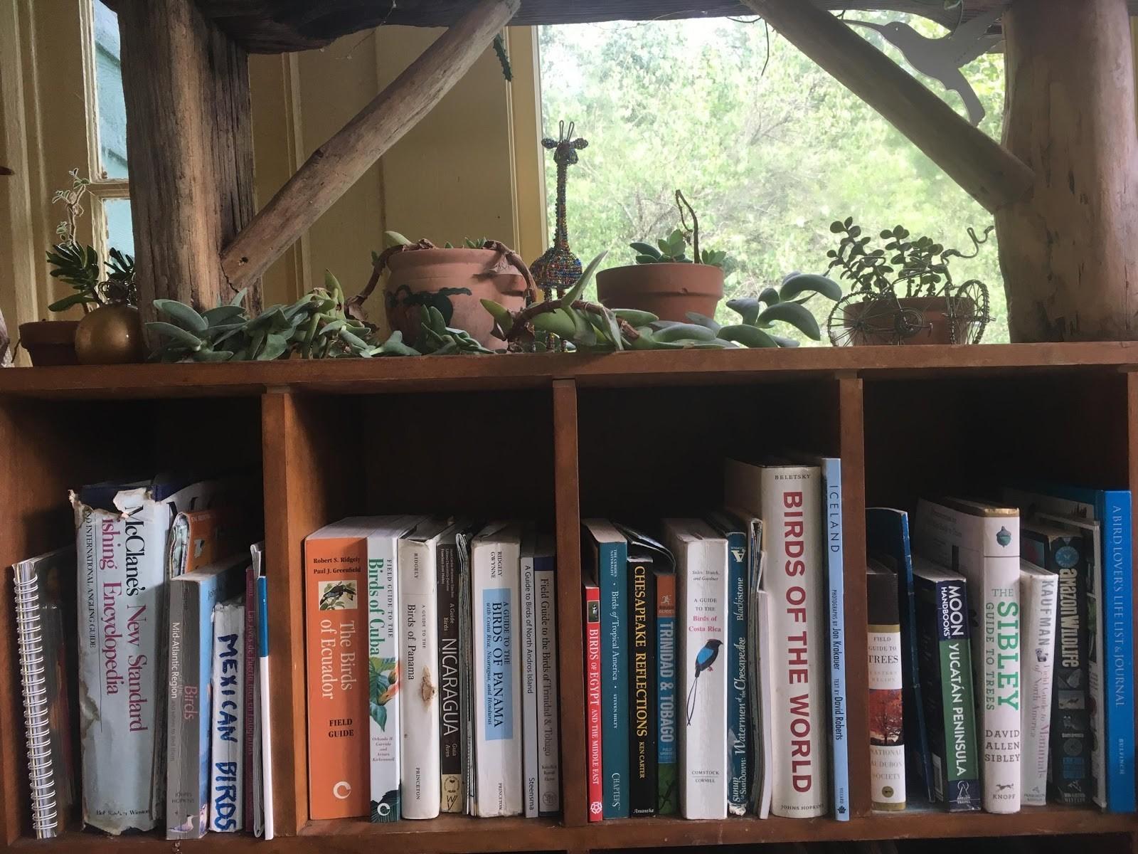 1. Entire bookshelf of bird field guides