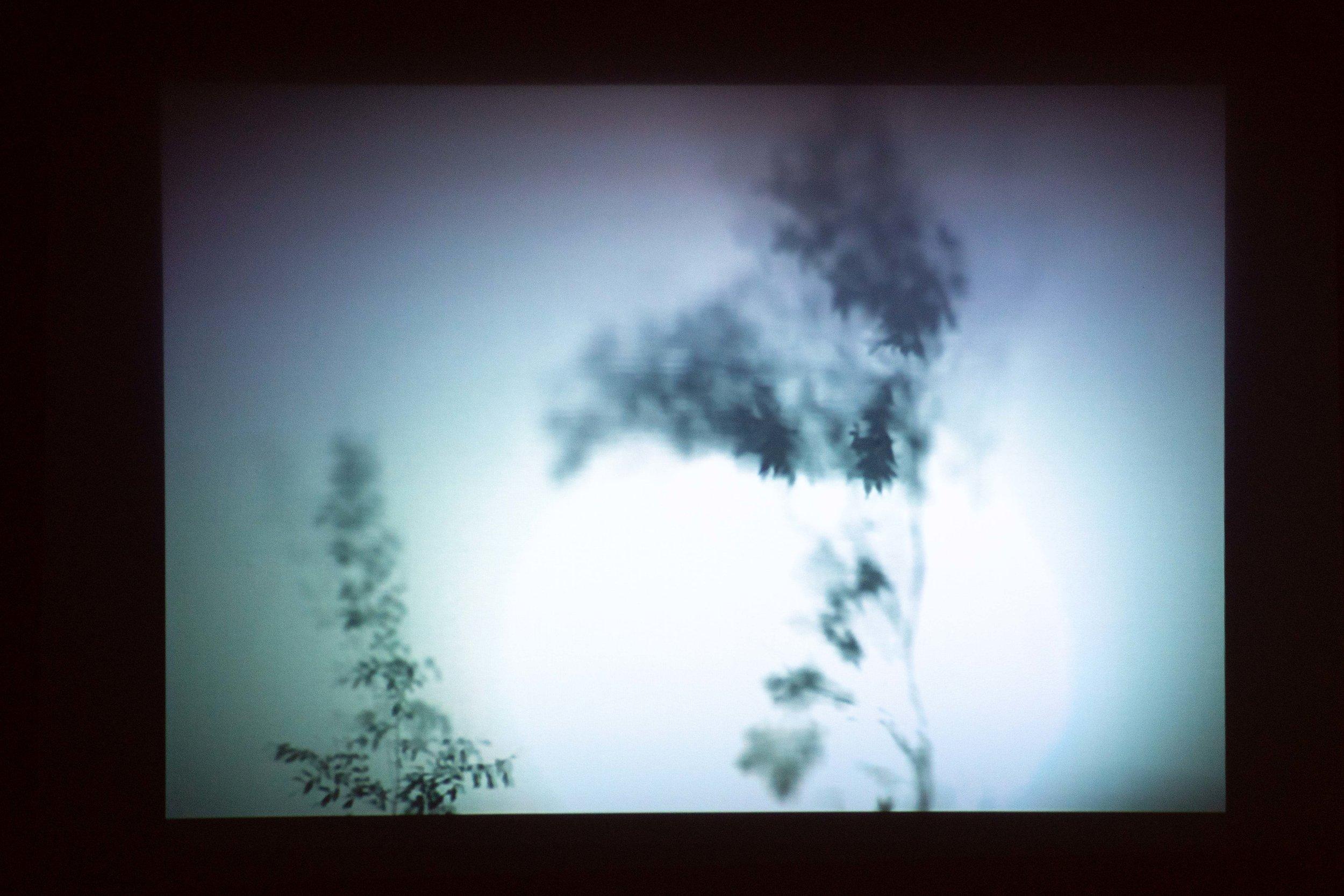 Cho Duck Hyun 조덕현 b. 1957   The Garden of Sound 음(音)의 정원 2015 Mixed Media, fabric, LED light, Dimension variable Music by Yun I-sang 음악 윤이상