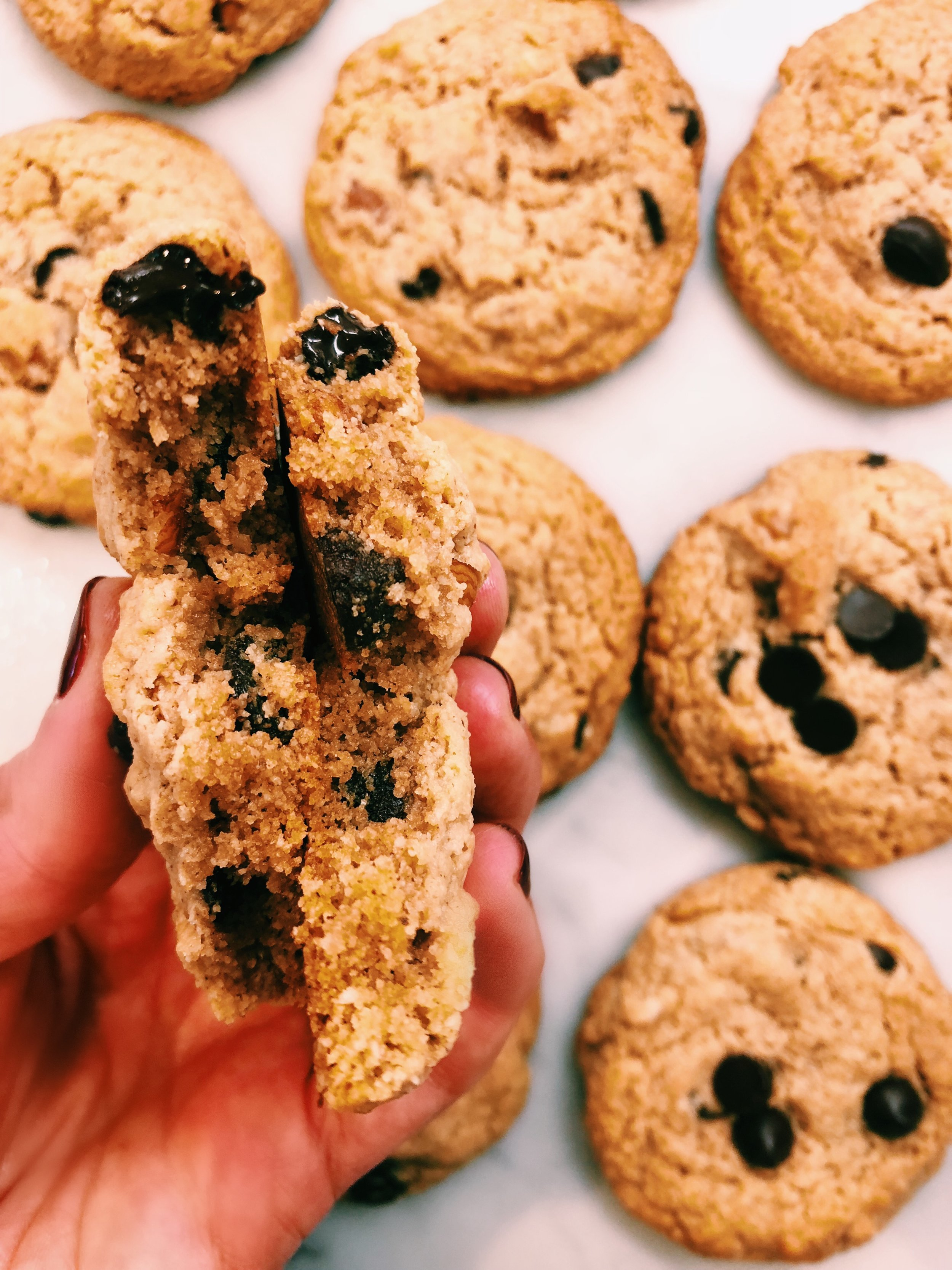 PALEO CHOCOLATE CHIP HAZELNUT COOKIES - INGREDIENTS1/4 cup melted coconut oil1/4 cup maple syrup1/4 cup nut butter of choice (I used Georgia Grinders, but any will do!)1 tsp vanilla extract2 tb dairy-free milk (I used Elmhurst1925 Unsweetened Hazelnut milk, but again, any will do!)1 cup + 4 tb almond flour (Bob's Red Mill fine almond flour)2 tb coconut flour (Bob's Red Mill coconut flour)1/4 tsp salt3/4 tsp baking soda1/3 cup roughly chopped hazelnuts1/2 cup Enjoy Life Foods dairy free chocolate chips