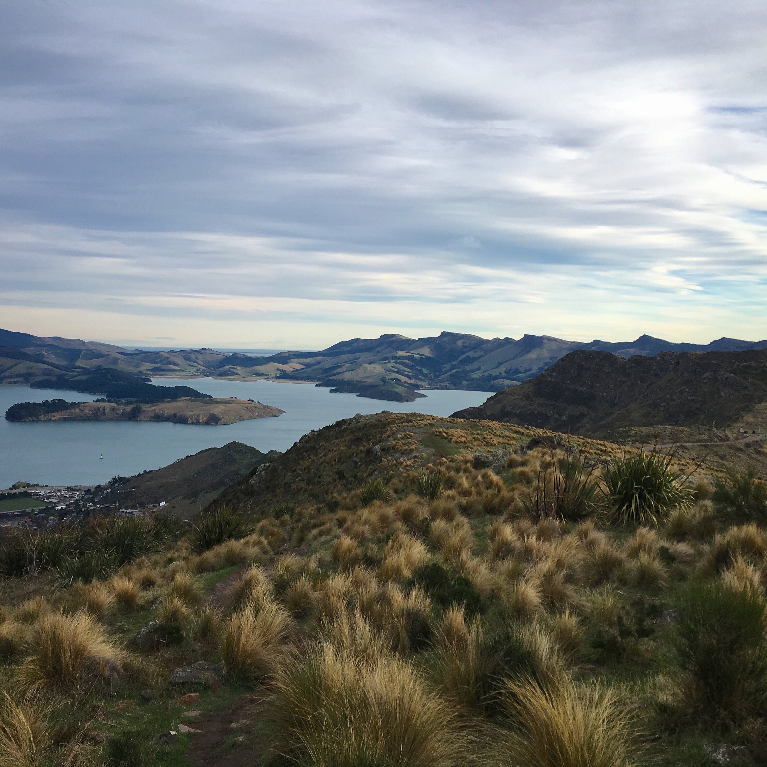 and of Lyttleton on the other side of the Cashmere hills.
