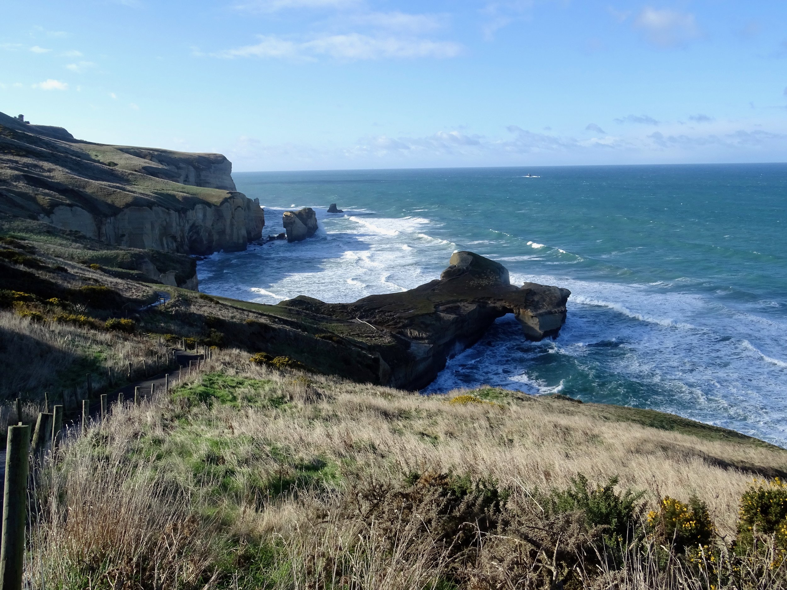Just outside of Dunedin is a stunning hike called Tunnel Beach. It's a long, steep walk down to the entrance which gives you plenty of time to enjoy the views.