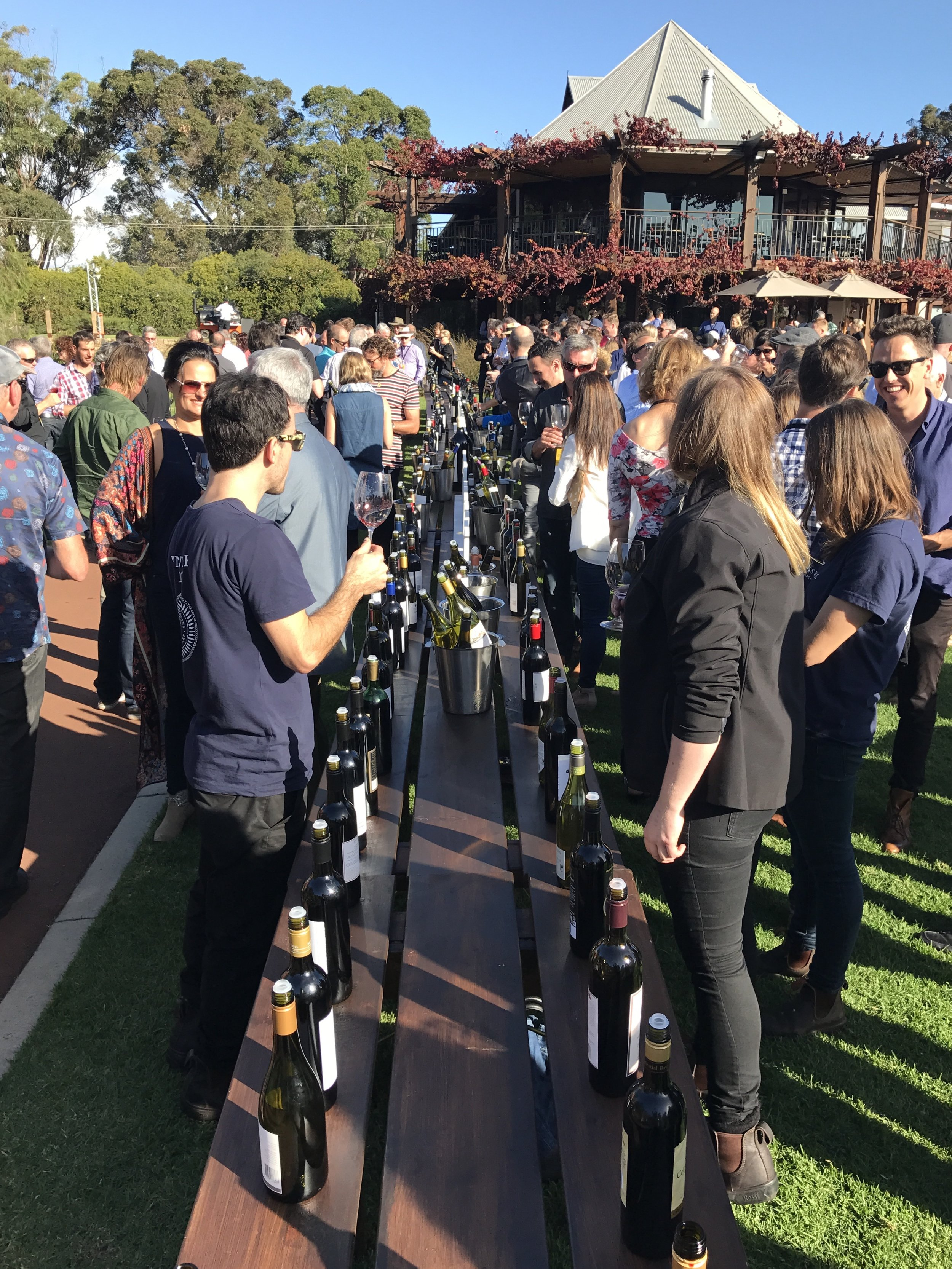 The view from here... straight down the line - this is what 350 wines from Margaret River's last 50 years looks like.