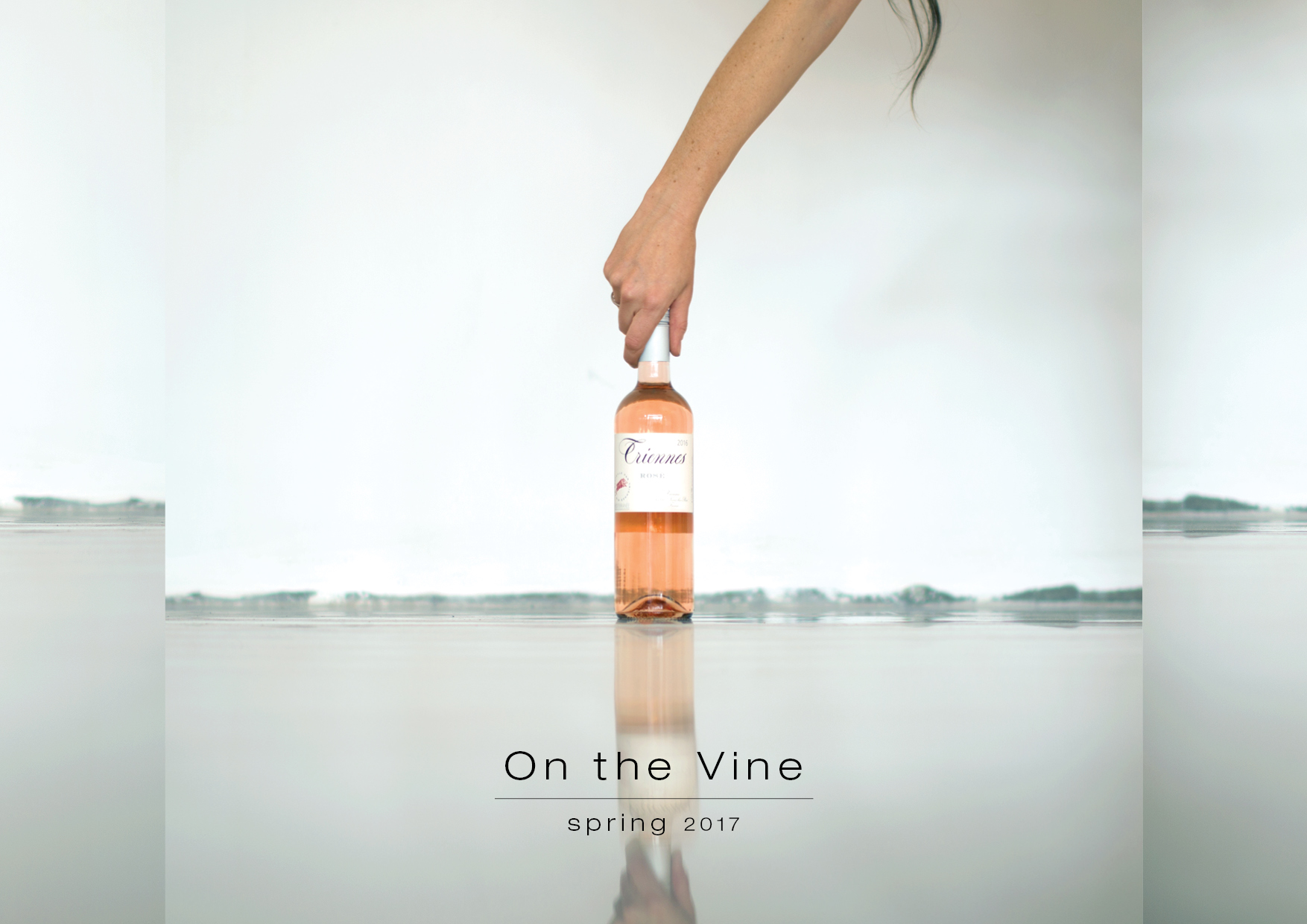 On-the-vine-spring-2017-catalogue-cover.jpg