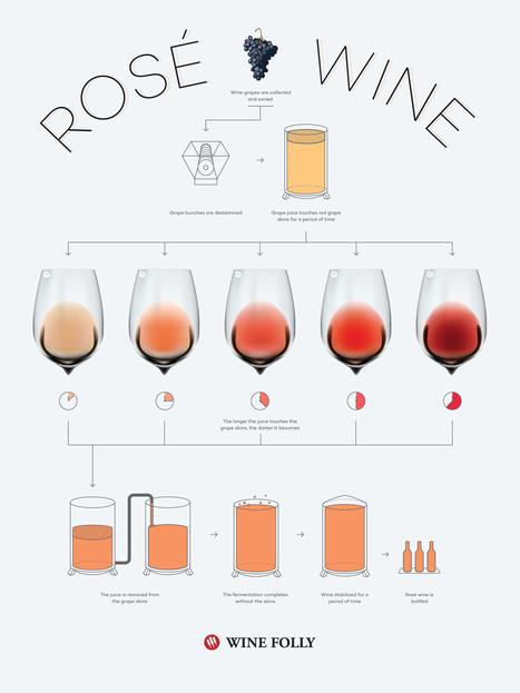 Photo: A rosé colour chart by  Wine Folly