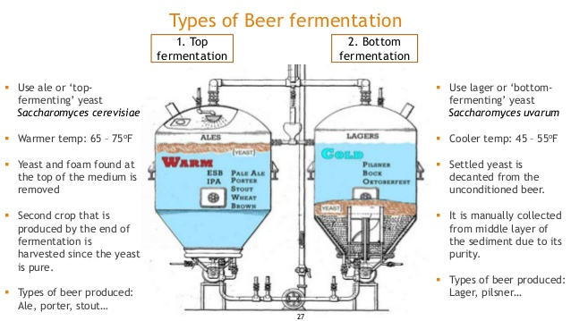 beer-fermentation-27-638.jpg