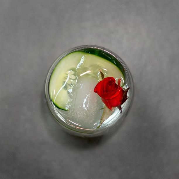 Cucumber-Rose-Gin.jpg