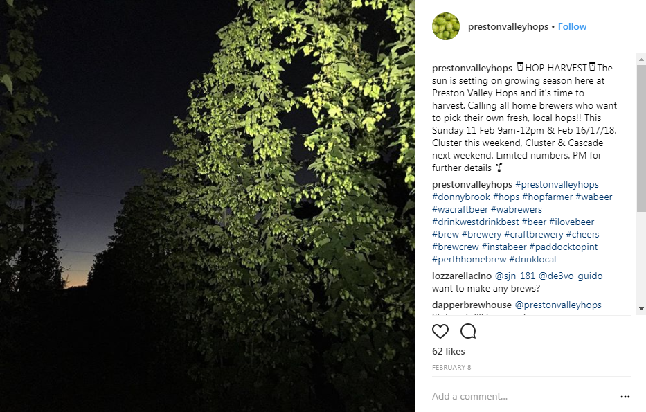 Image: @prestonvalleyhops  Instagram account.