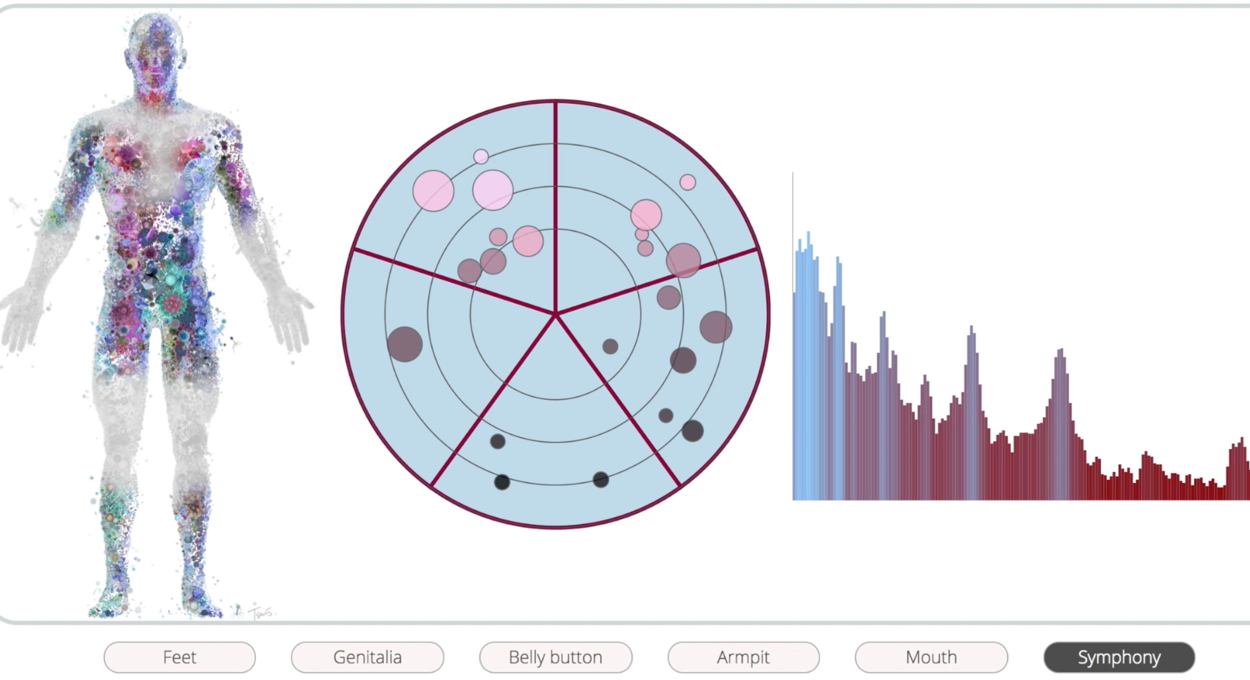 A demo of the sonification implementation can be viewed at http://biotabeats.com/visualization.html