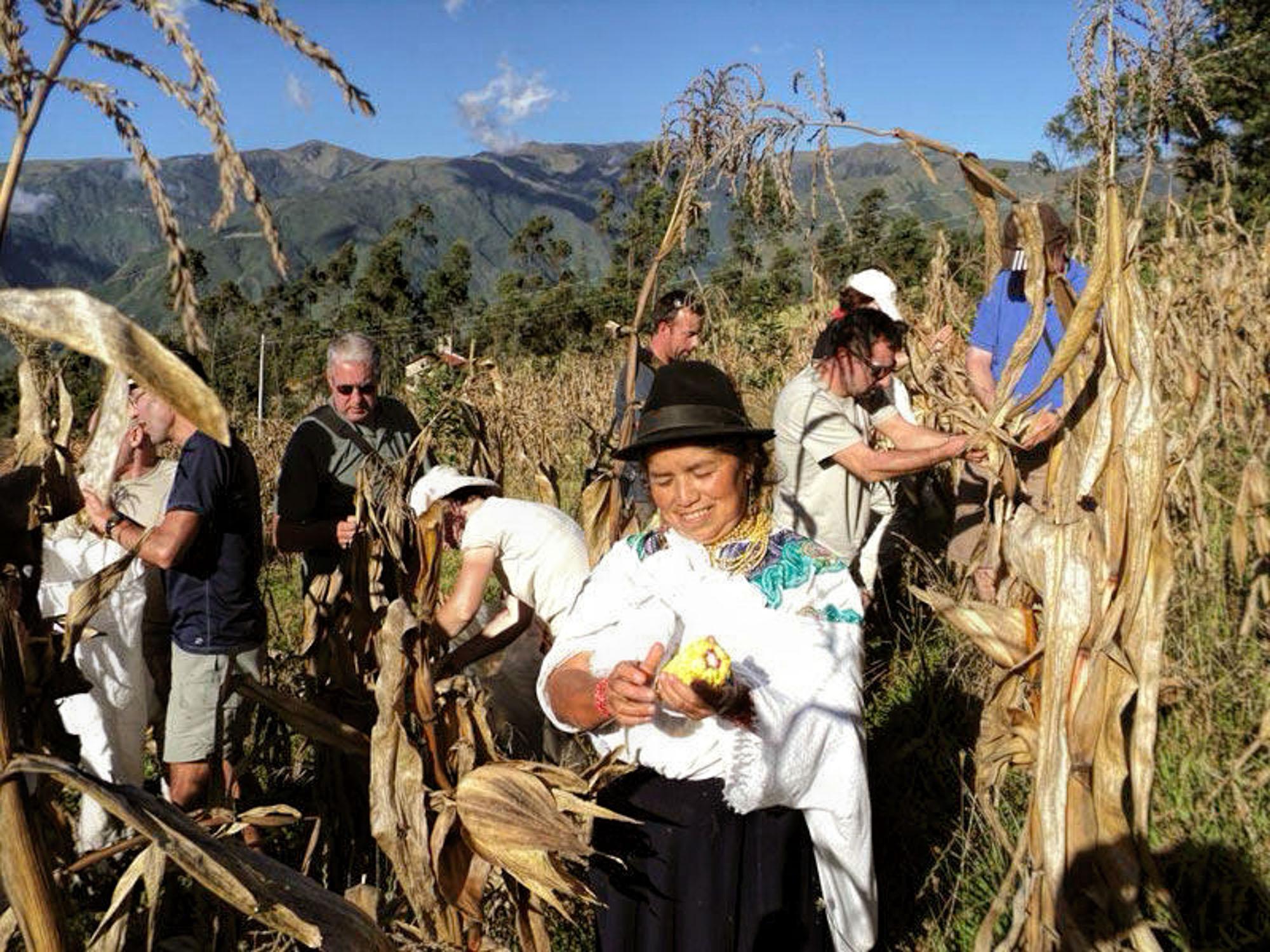 Ecotourisme-voyages-alternatifs-Equateur-En-liberte-3.jpg