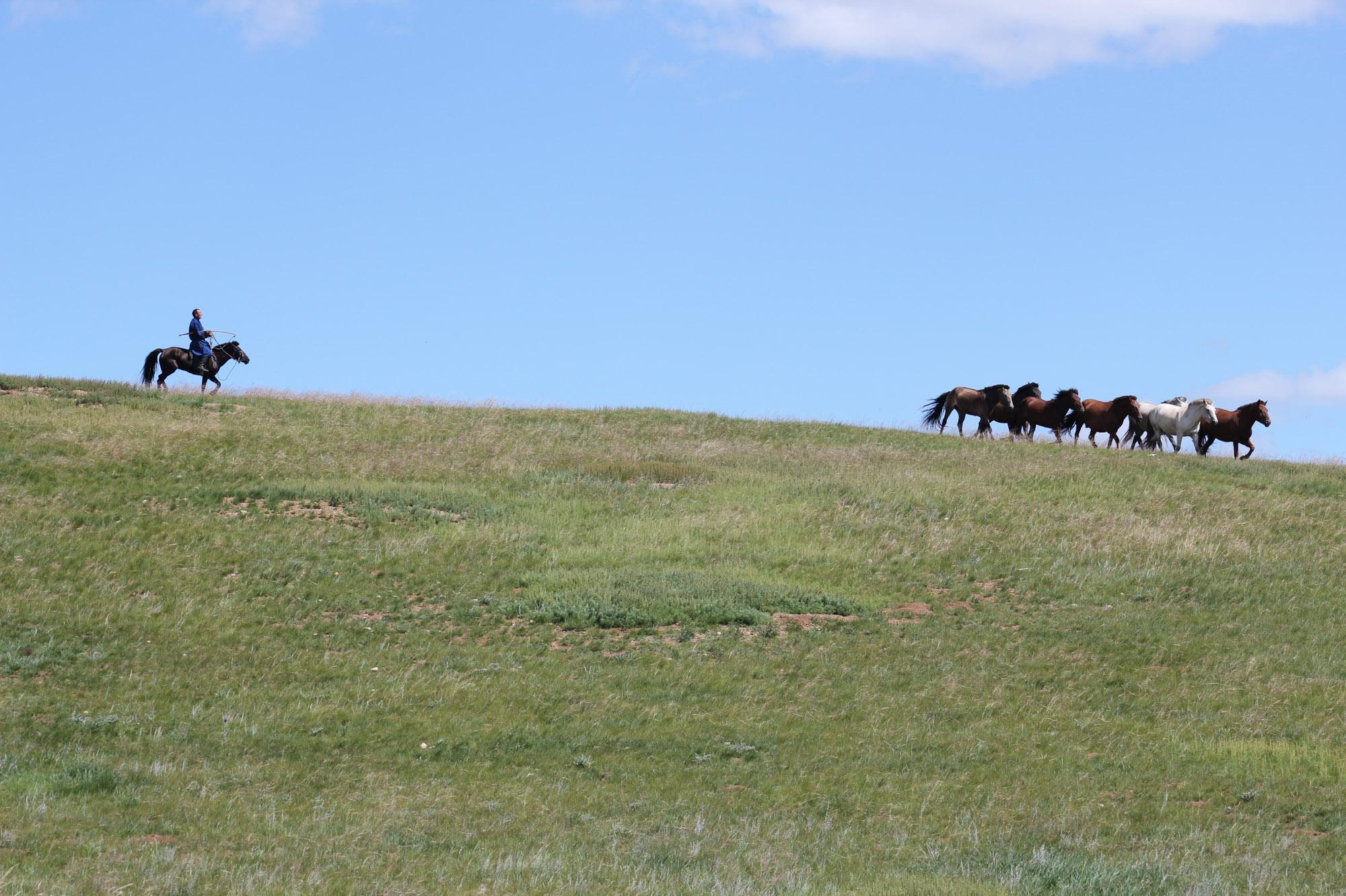 Ecotourisme-voyages-alternatifs-Mongolie-Immersion-14.jpg
